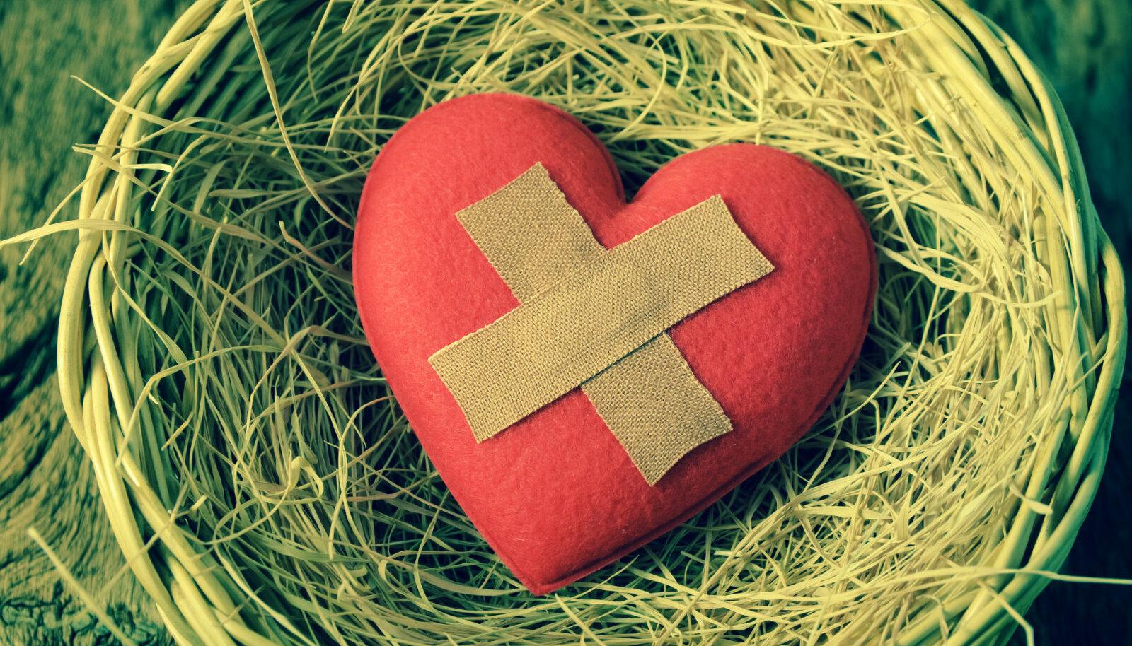 Kui asud tervendama oma hinge, tervendad ühtlasi oma keha ning seeläbi terveneb terve Sinu elu