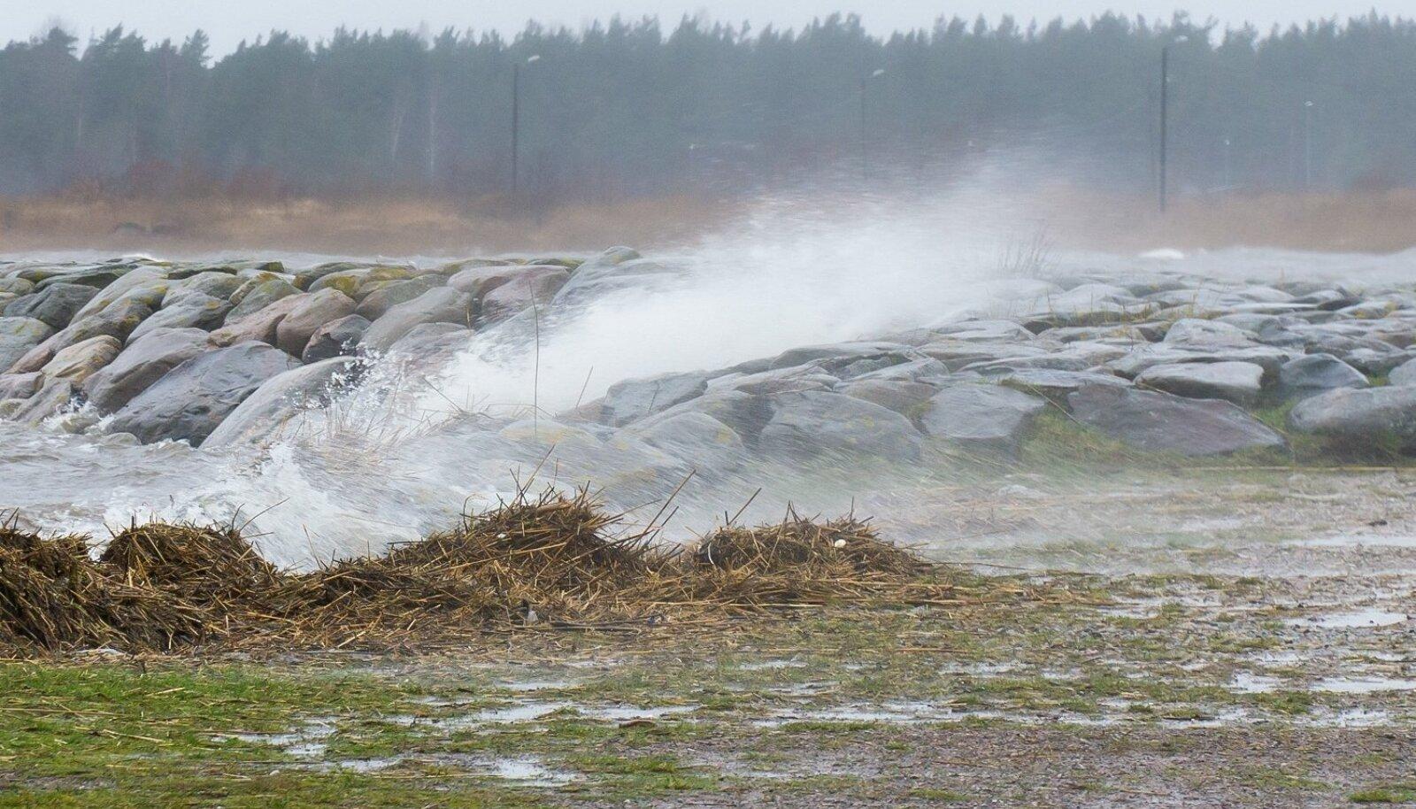 Torm Saaremaal, kõre veetase, tugev tuul