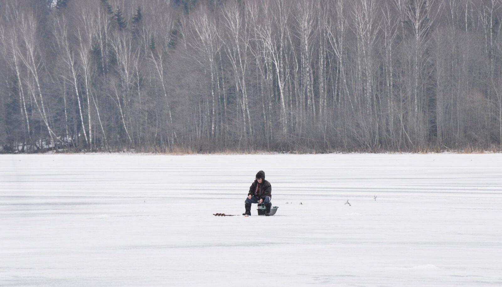 Kalamees jääl