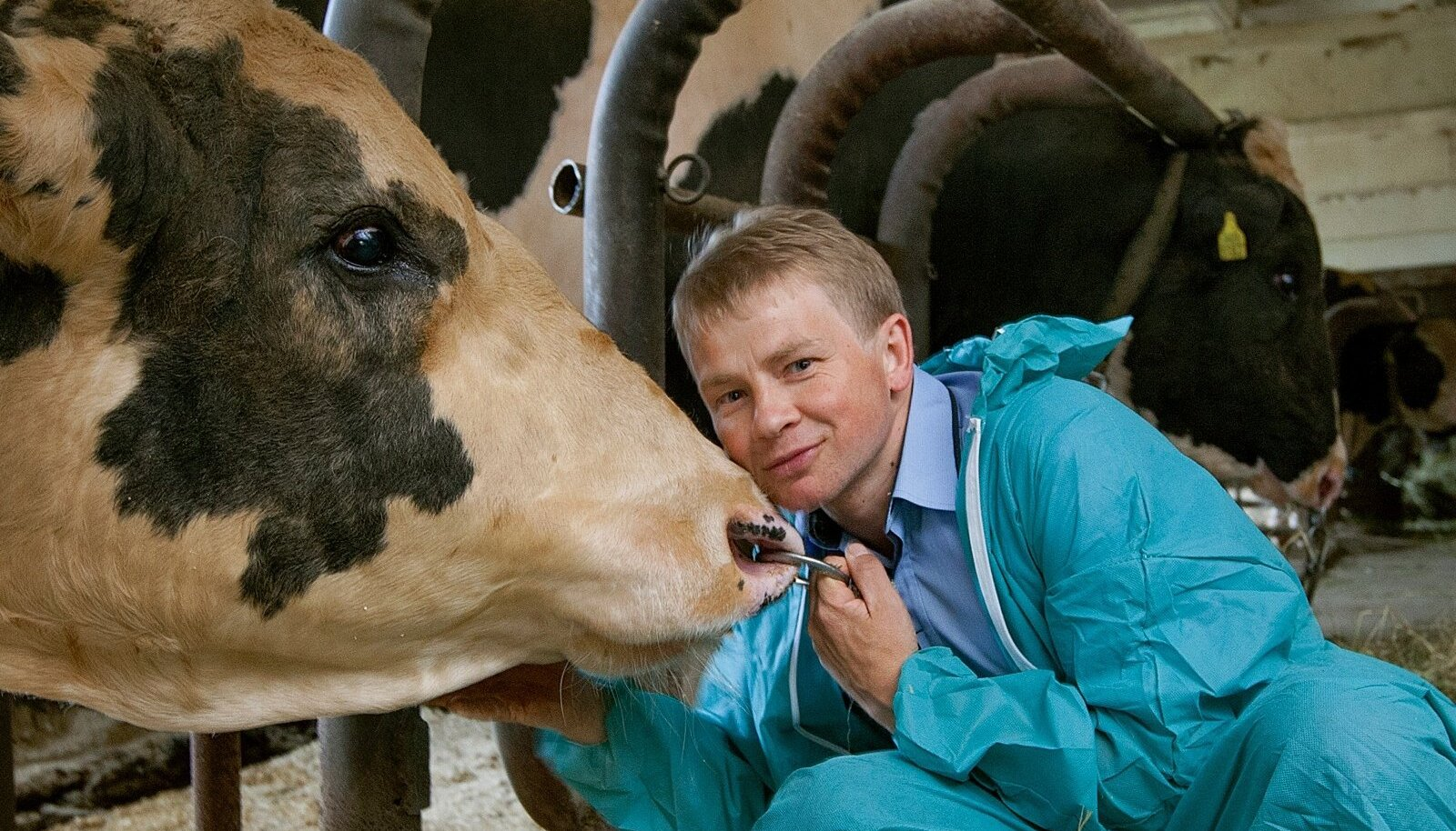 Aasta põllumehe 2016 kandidaat Tanel Bulitko,  Eesti Tõuloomakasvatuse Ühistu juhatuse esimees.