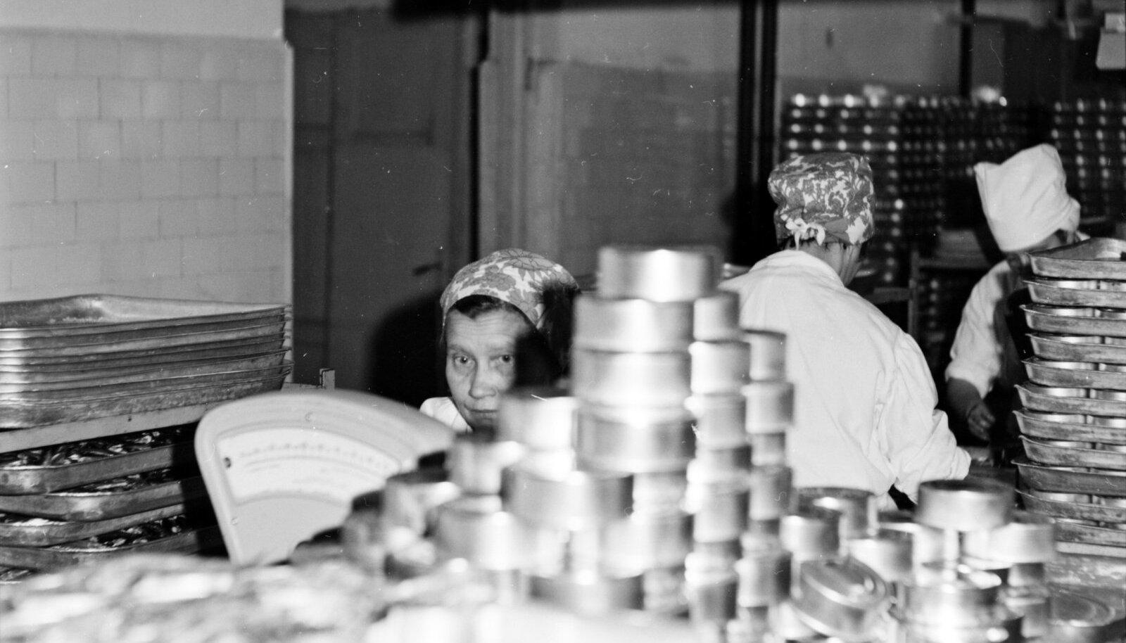 KALA PLEKI SISSE: Nii pakendati räim tomatis ja teised konservid Hiiumaa kalakombinaadis karpidesse. Foto aastast 1969.