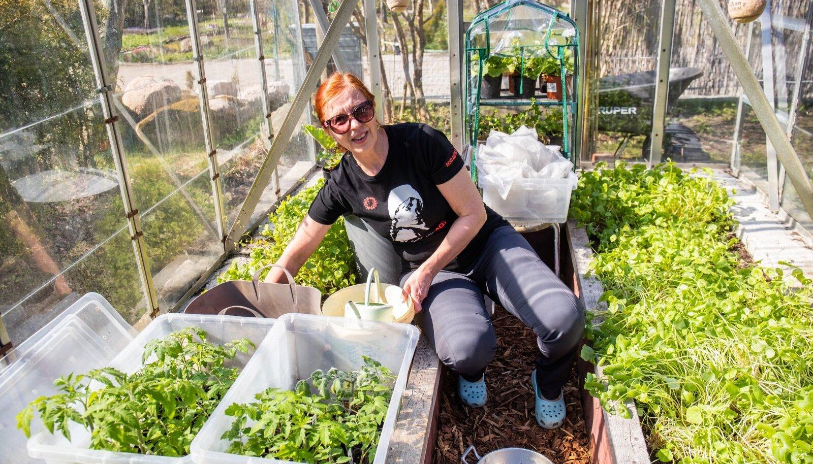 """Eva kasvatab suurt osa rohelist lihtsalt ilu pärast. """"Mul on olnud salatitega maalitud peenraid, millest keegi ei tohi võtta mitte midagi."""""""