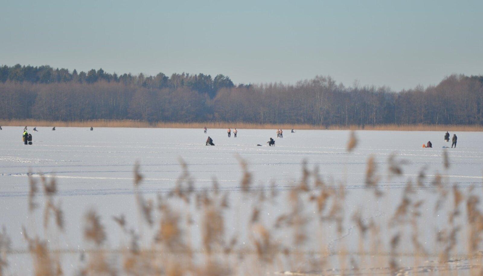 Kui jää on tugev, saab Harku järvel kala püüda