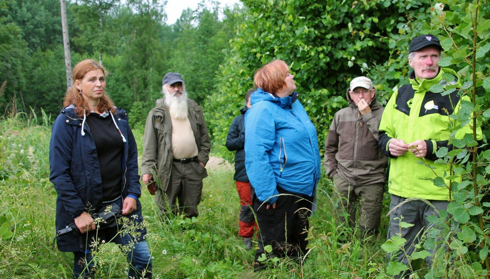 Maie Rebane (vasakul) näitab hiljuti istutatud lanki. Naine teab täpselt, et kahe aastaga on nad istutanud 11 300 kuuske.