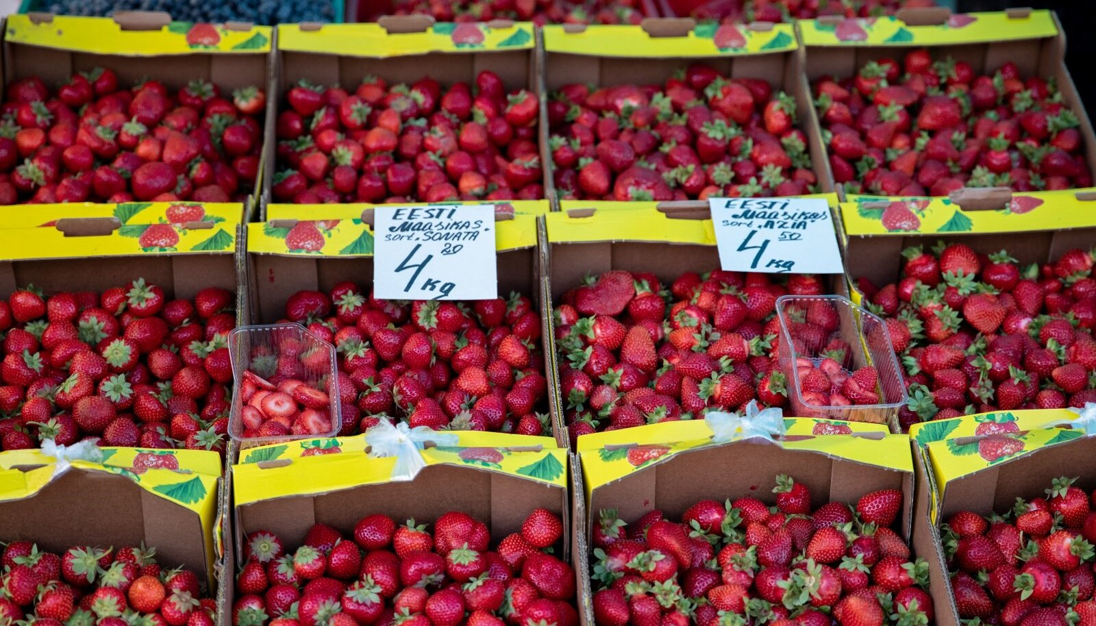 Maasika hind keskturul