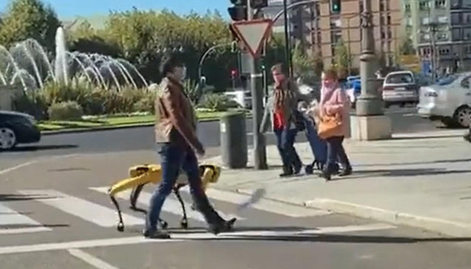 Robotkoer jalutamas