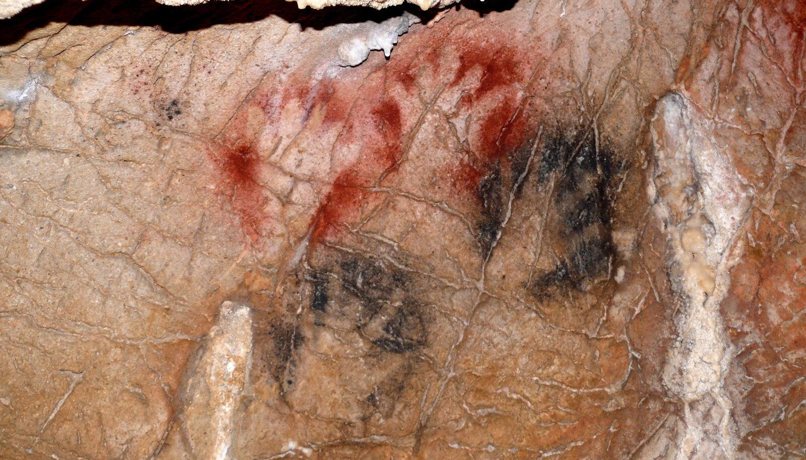 Käte kujutised Grotte de Gargas' koopas