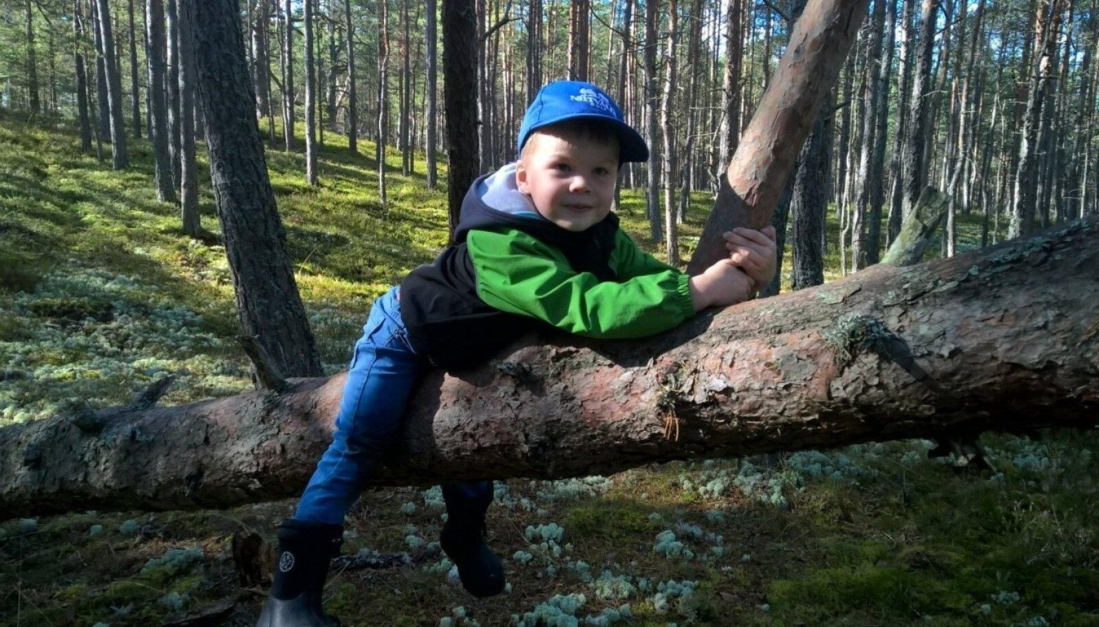 2015. aasta septembris Lohusalu metsas. Lohusalus on Küttimite pere suvila. Vanemate sõnul meeldis Paul Mortenile väga looduses olla, vabalt joosta, puude otsa ronida ning uurida taimi ja putukaid. Kui tema käest küsiti, mida ta teha tahab, vastas ta sage