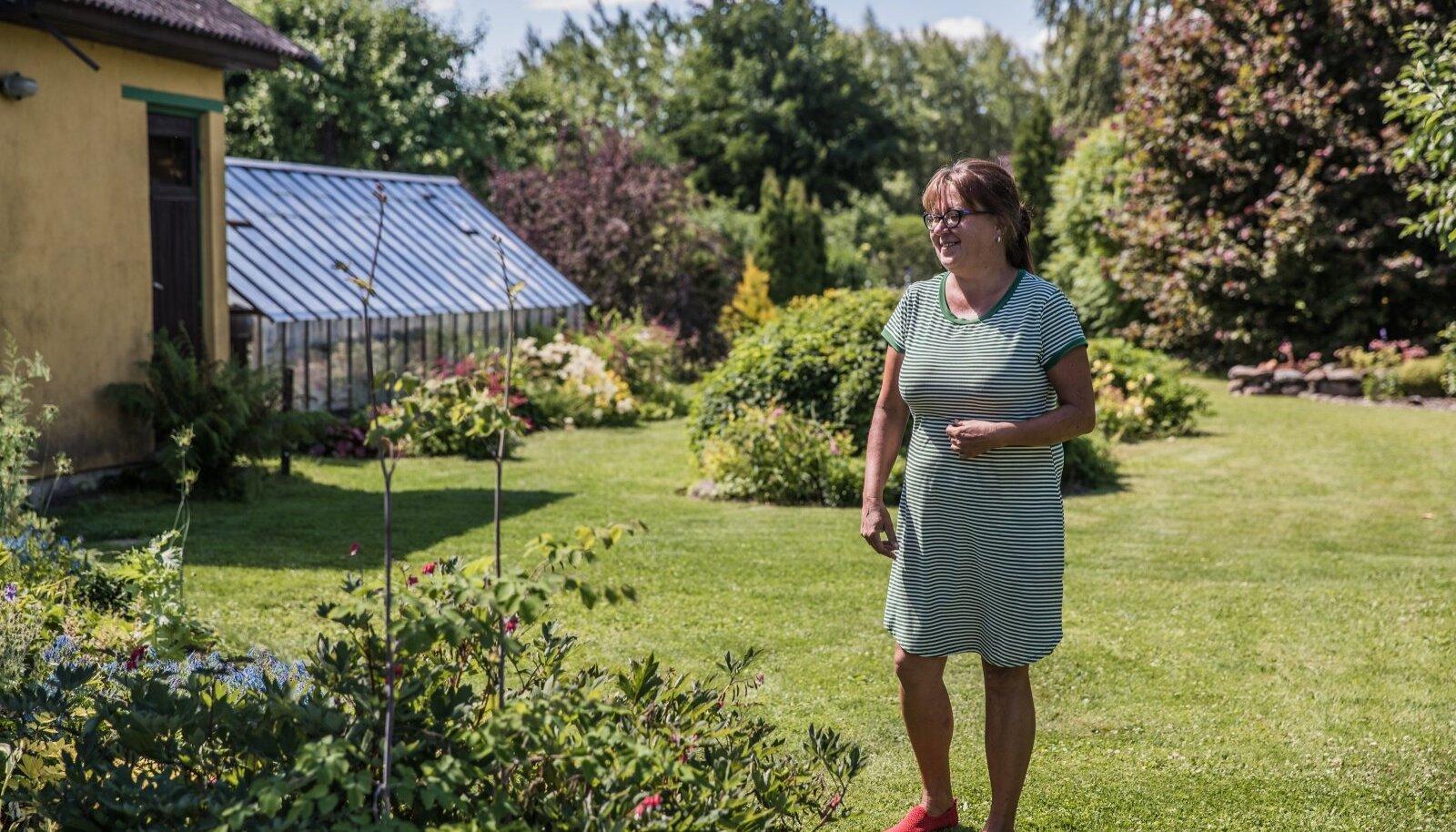 Risttee talu taimeaed - Karin Peebu