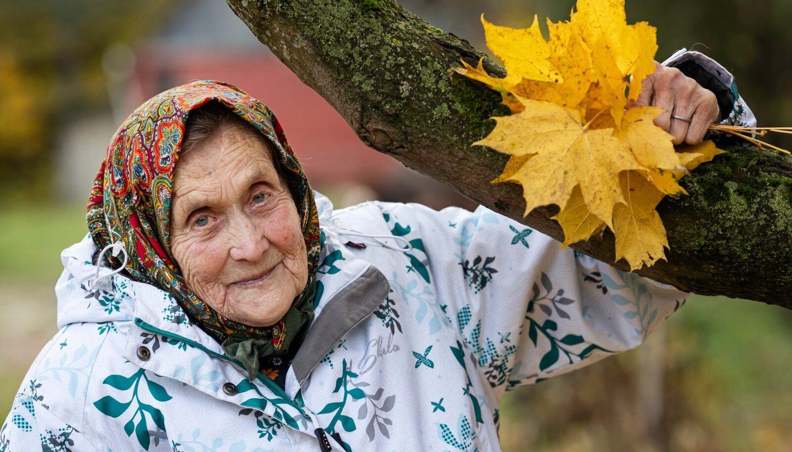 """SÜGISLEHTEDE SAHIN Elusügis teeb elurõõmsal Virvel vahel meele kurvaks ka. """"Ega ei tea, mis elu veel toob. Palju halba ja head on nähtud. Elu on kõik mööda läinud. Kõik ilus on läind nagu õhk. Ilus aeg on kõik selja taga,"""" ohkab Virve."""