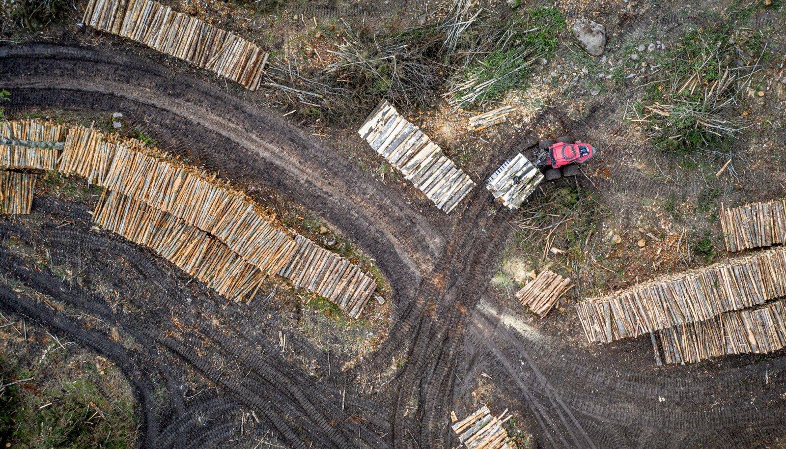 Keskkonnaministeerium ütleb, et kui arengukava vastuvõtmine jääbki venima, läheb elu samal ajal edasi.