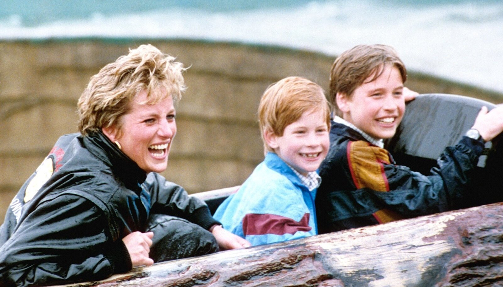 1995: printsid oma ema, printsess Dianaga