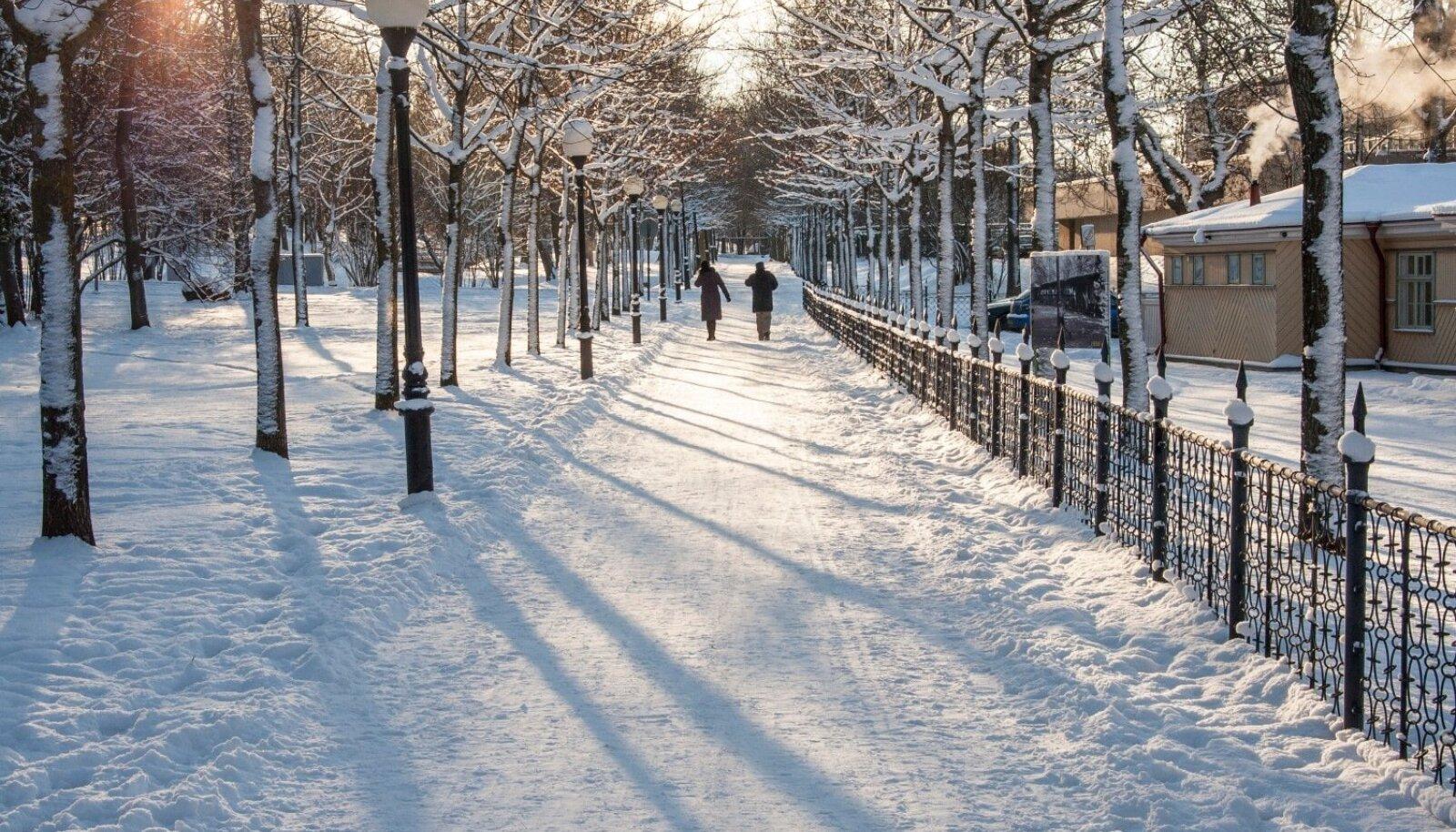 Talvine külm Kadriorus