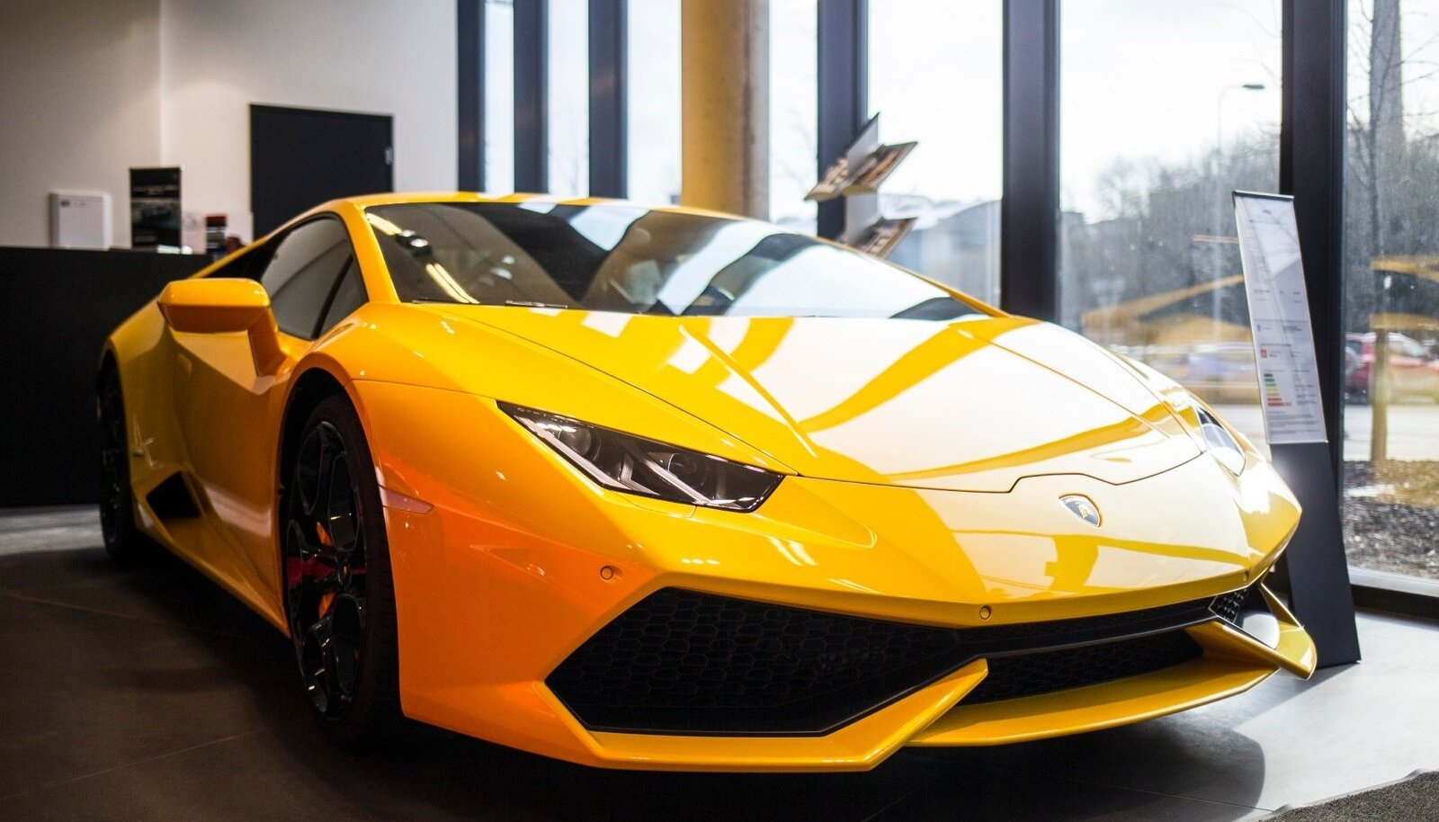 Lamborghinid poes