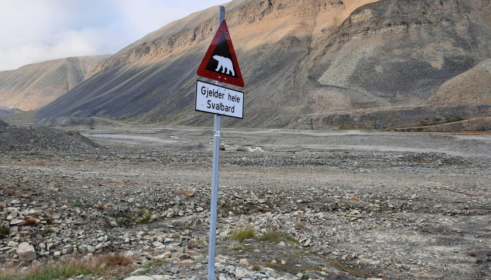 Stopp! Spontaanseid jalgsirännakuid ei tasu Teravmägedes teha. Valitseb tõeline jääkaruoht.