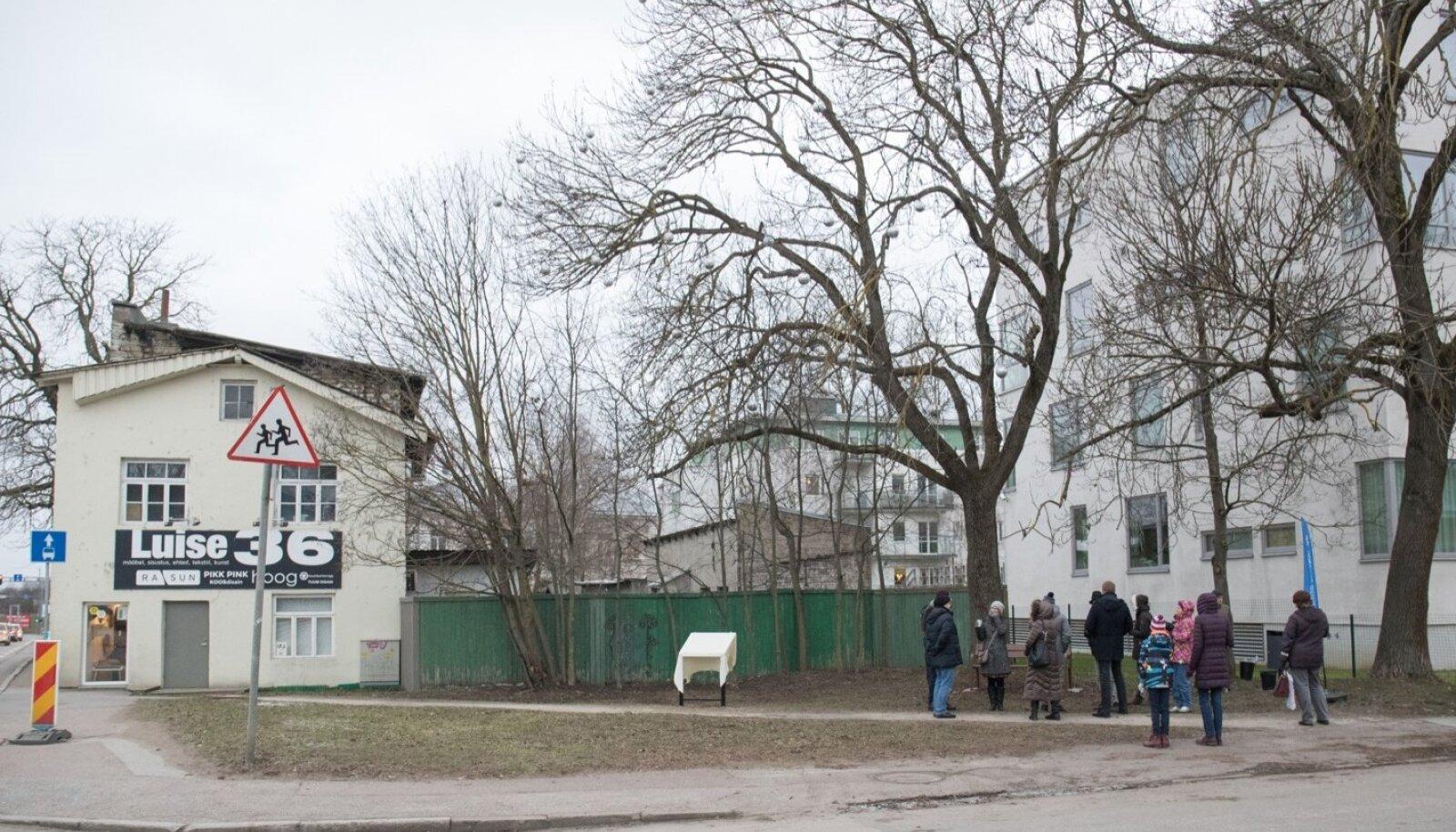Mälestustahvli avamine Marie Underi sünnipaigas Koidu tänaval