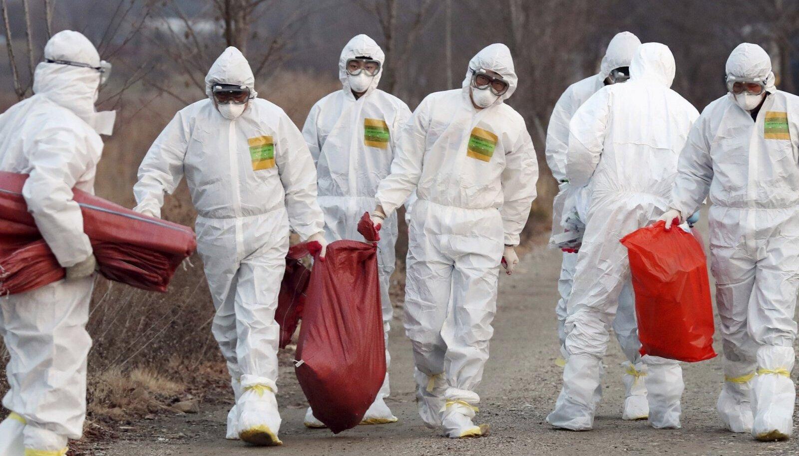 Lõuna-Korea tervishoiutöötajad tapetud kanu transportimas