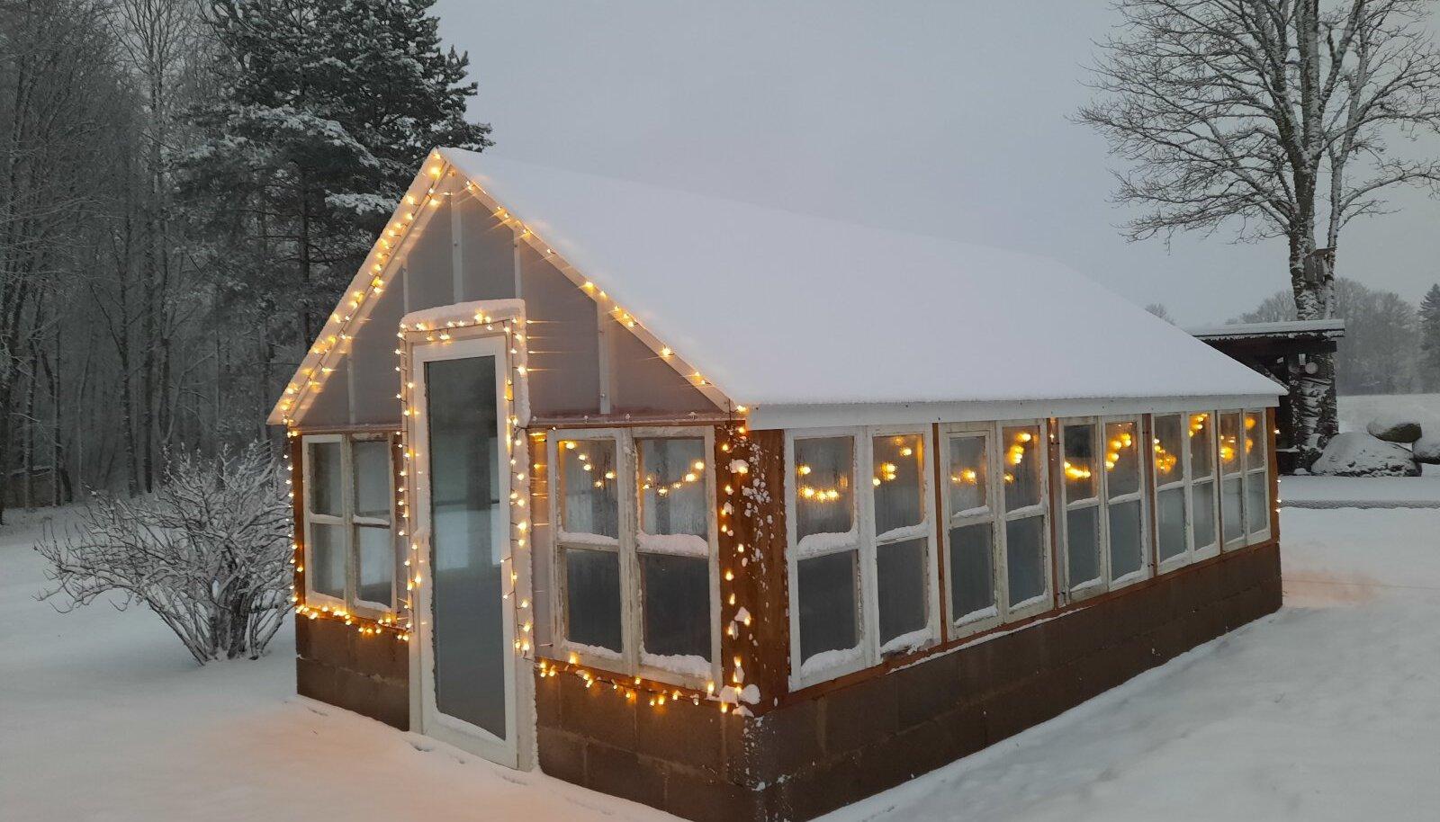 Õhuke lumekiht ei ole sellisele kasvuhoonele ohtlik, kuid paksem lumi tuleb maha ajada.