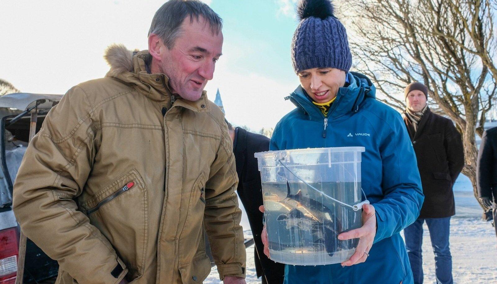 President Kersti Kaljulaid poetas Narva jõkke 200 tuura