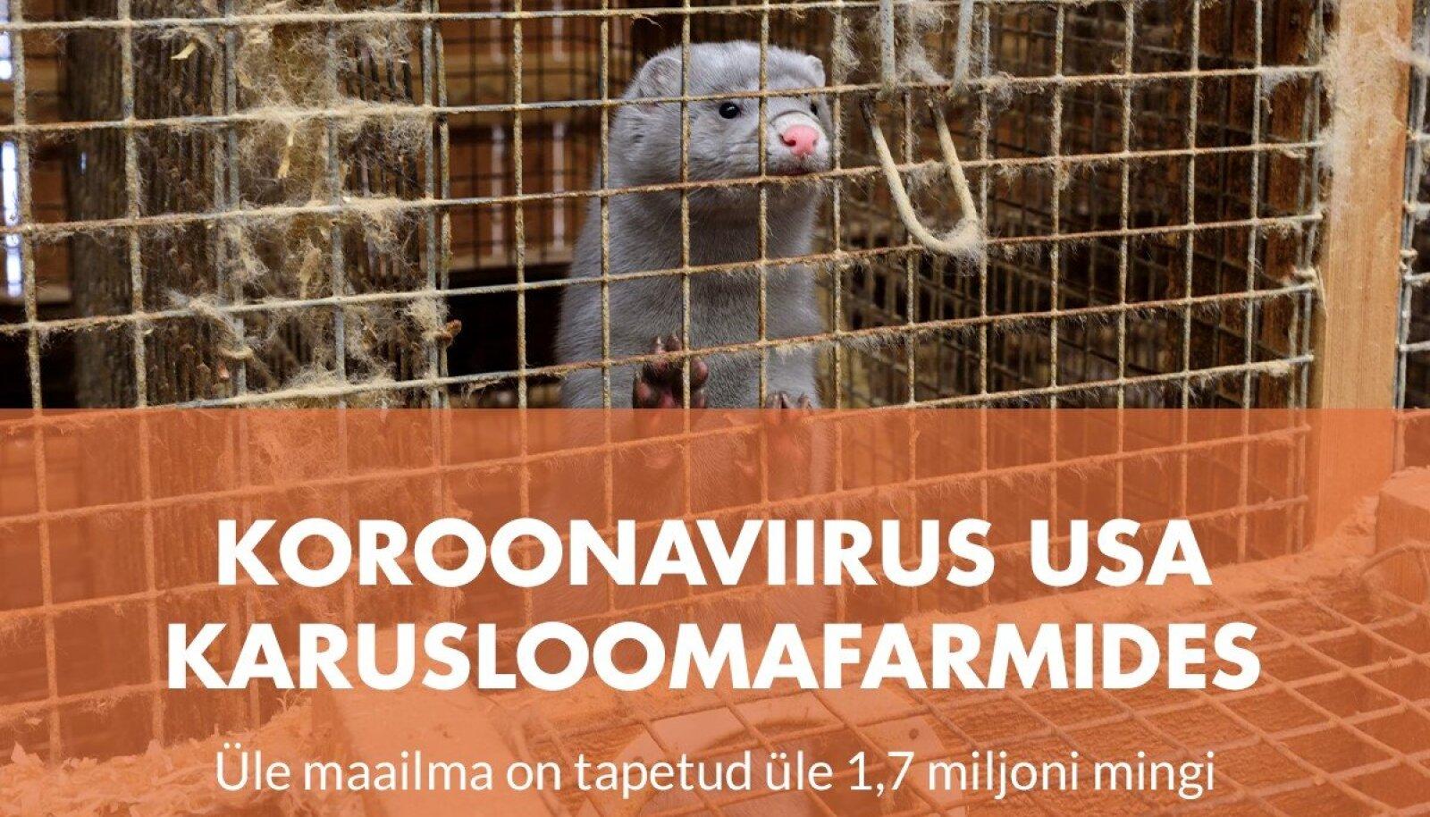 Loomuse plakat karusloomafarmide vastu