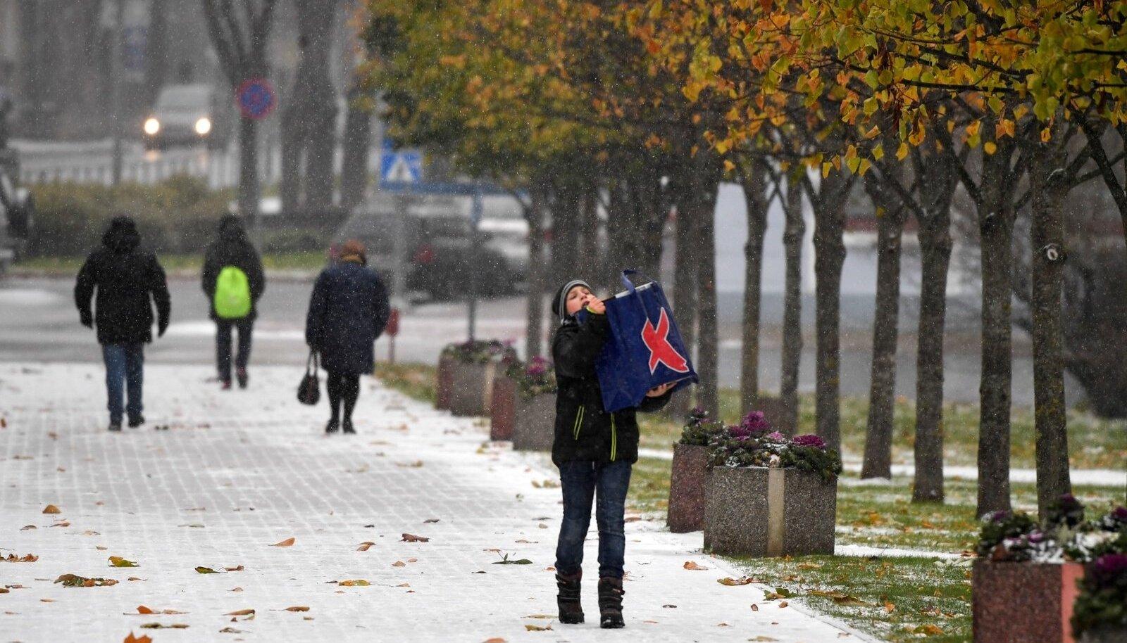 Lumi Narvas 26.10.2017