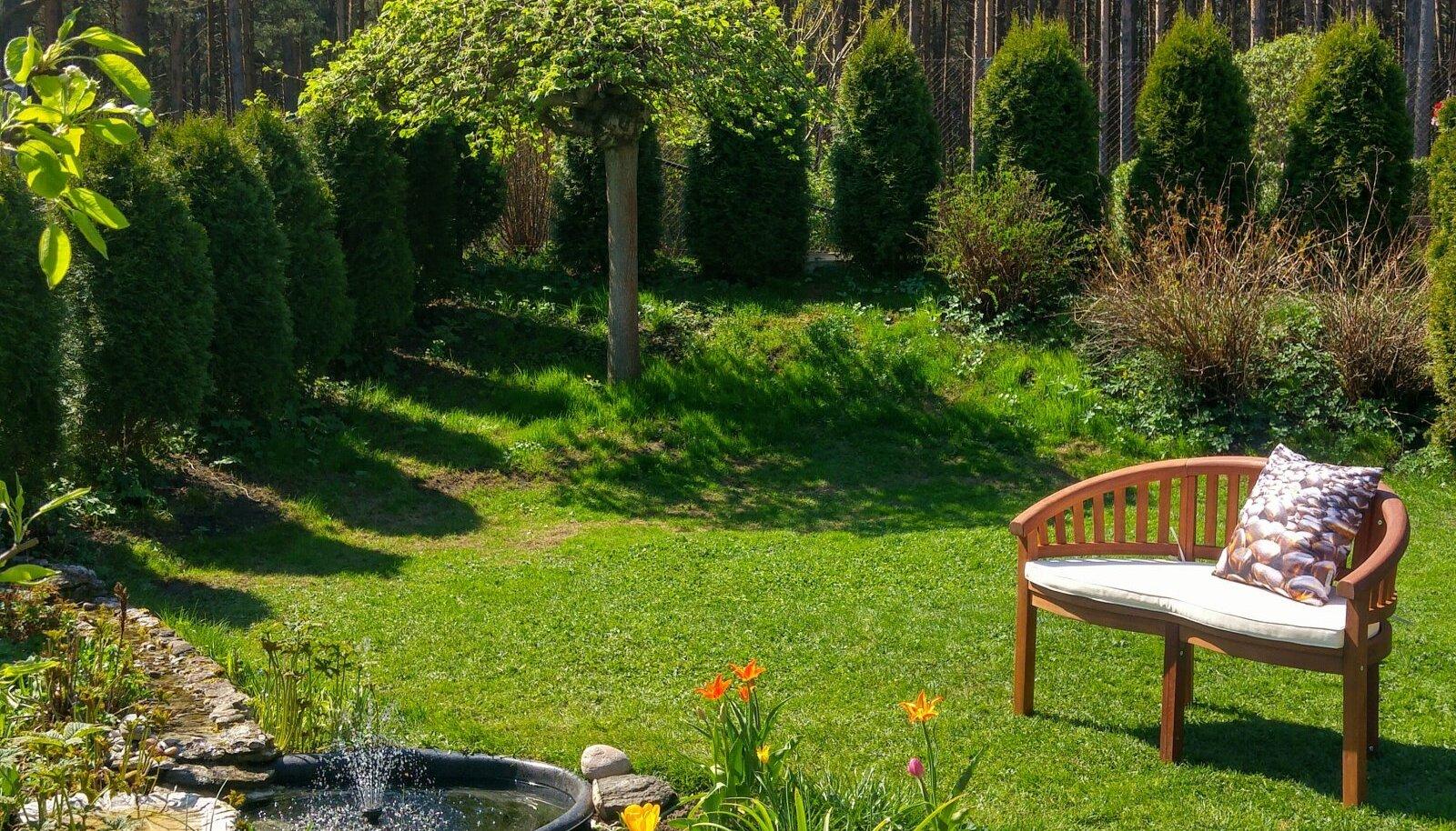 Kuusemäe talu aed
