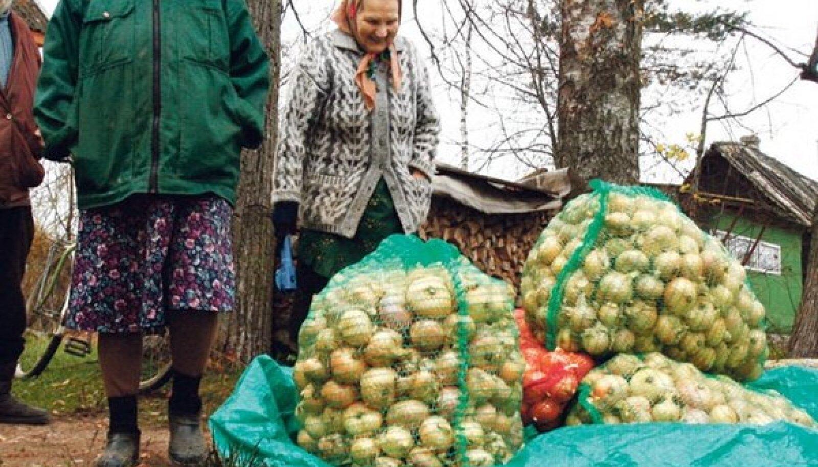 Pärast Eesti Päevalehe üleskutset said Peipsi-äärsed sibulakasvatajad sibulaid soovijatele kokku tooma hakata.