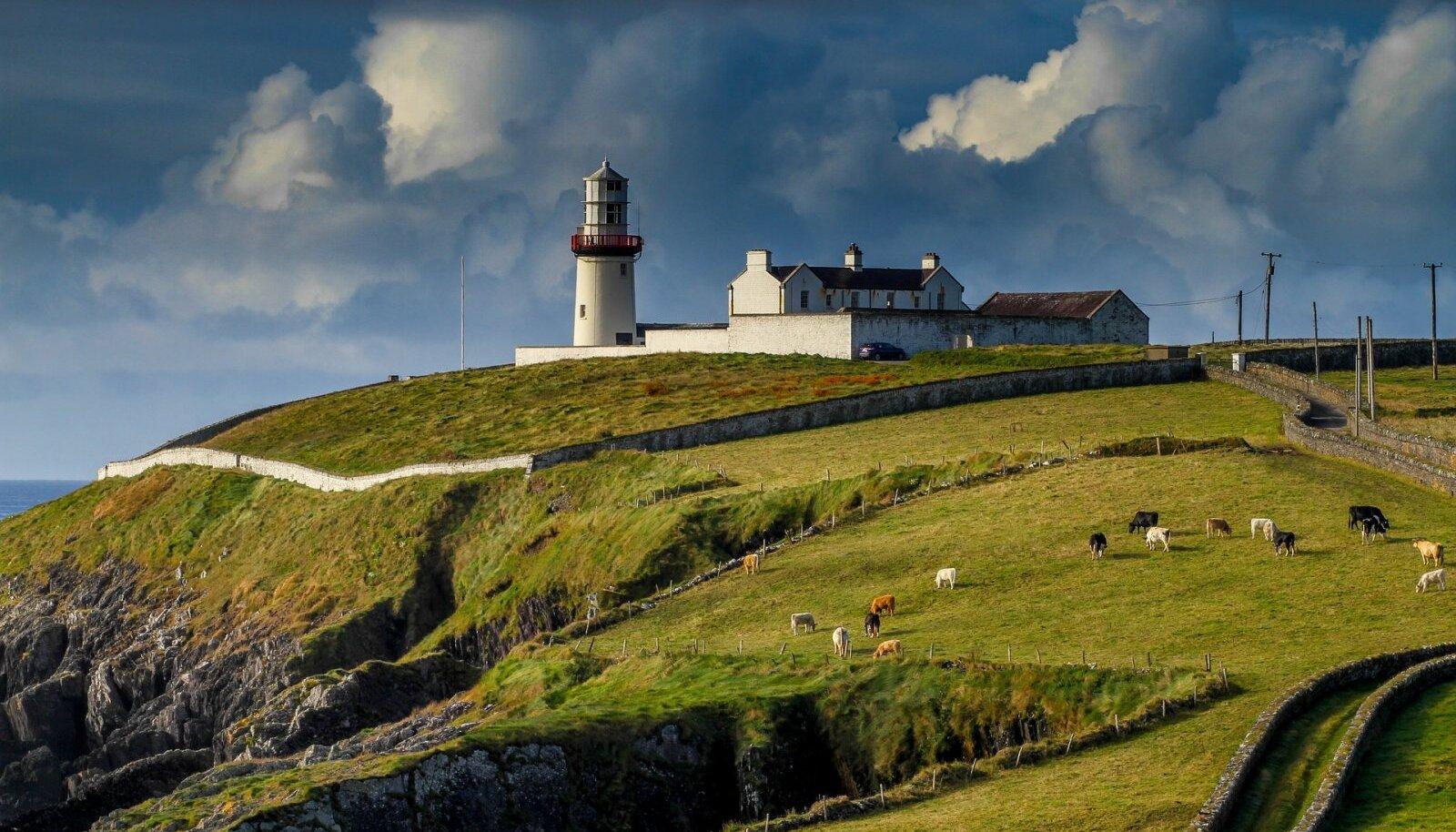 Iirimaa