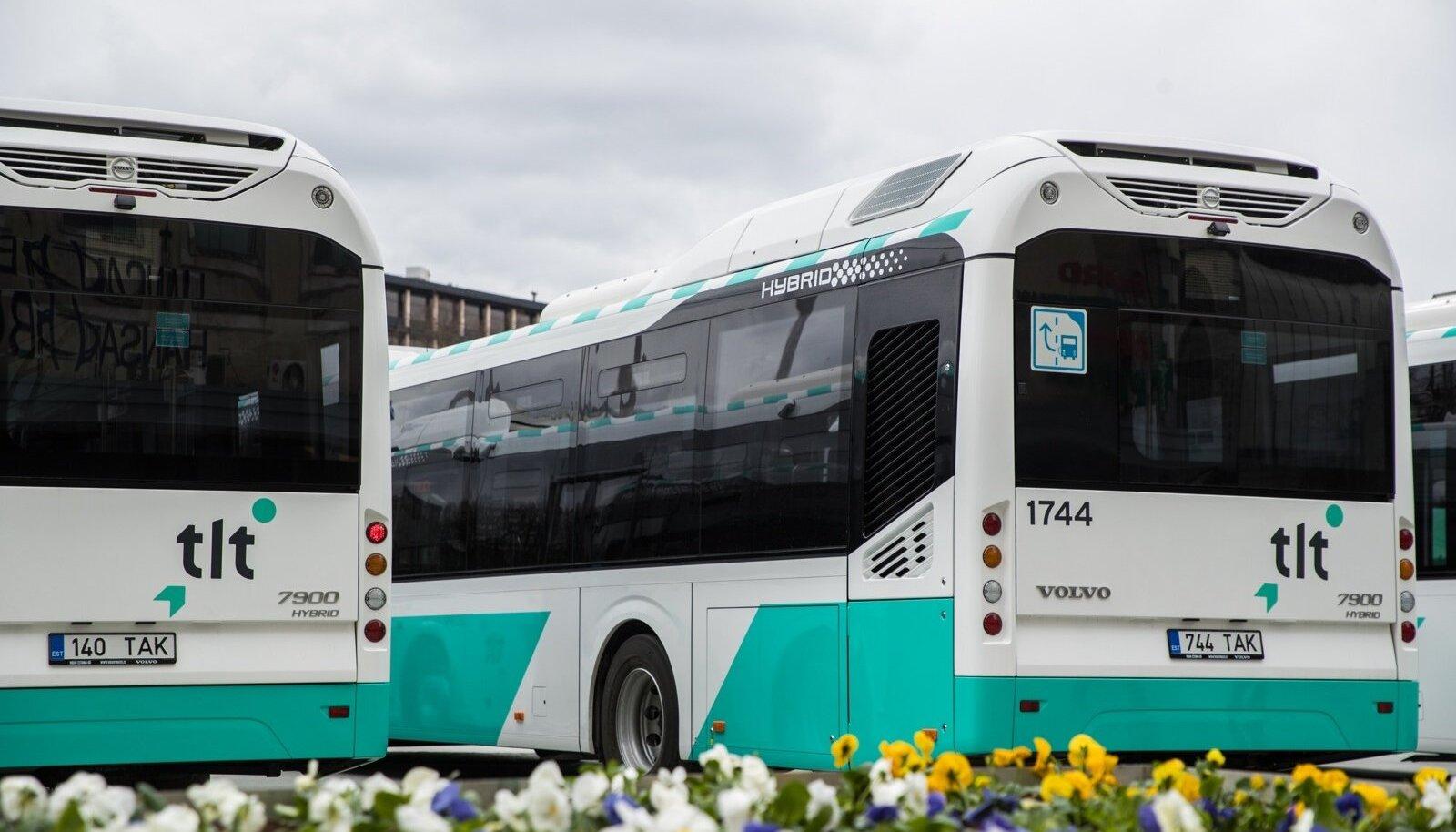 TLT bussid