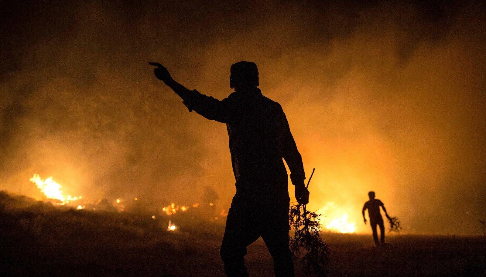 Kliima soojenemisega kaasneb rohkem tulekahjusid. Siberis on tuli sel suvel haaranud vähemalt 2 miljonit hektarit metsa.