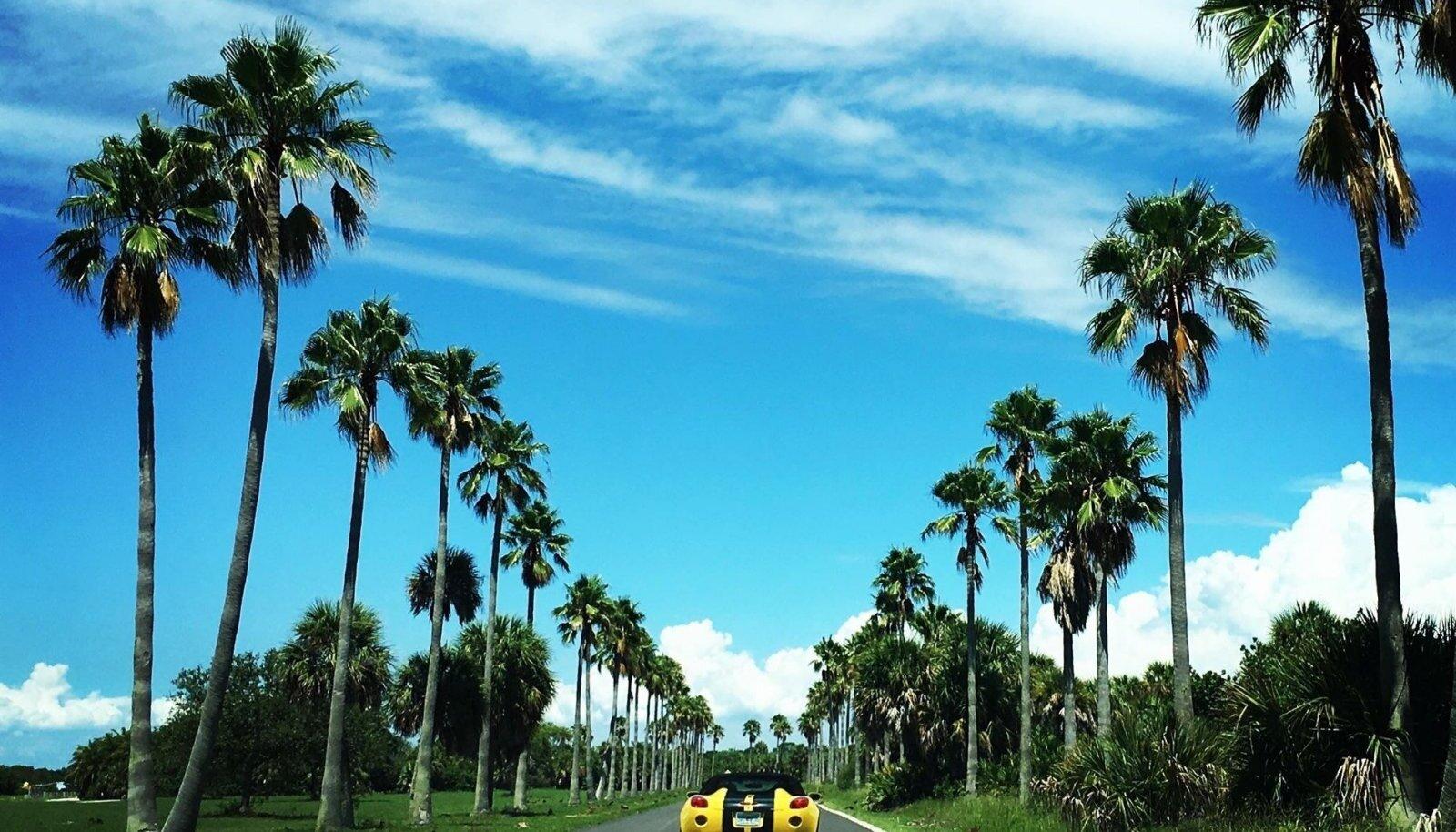 PÄRAST TORMI: Kollane sportauto kollase päikese all Fort de Sotos Floridas.