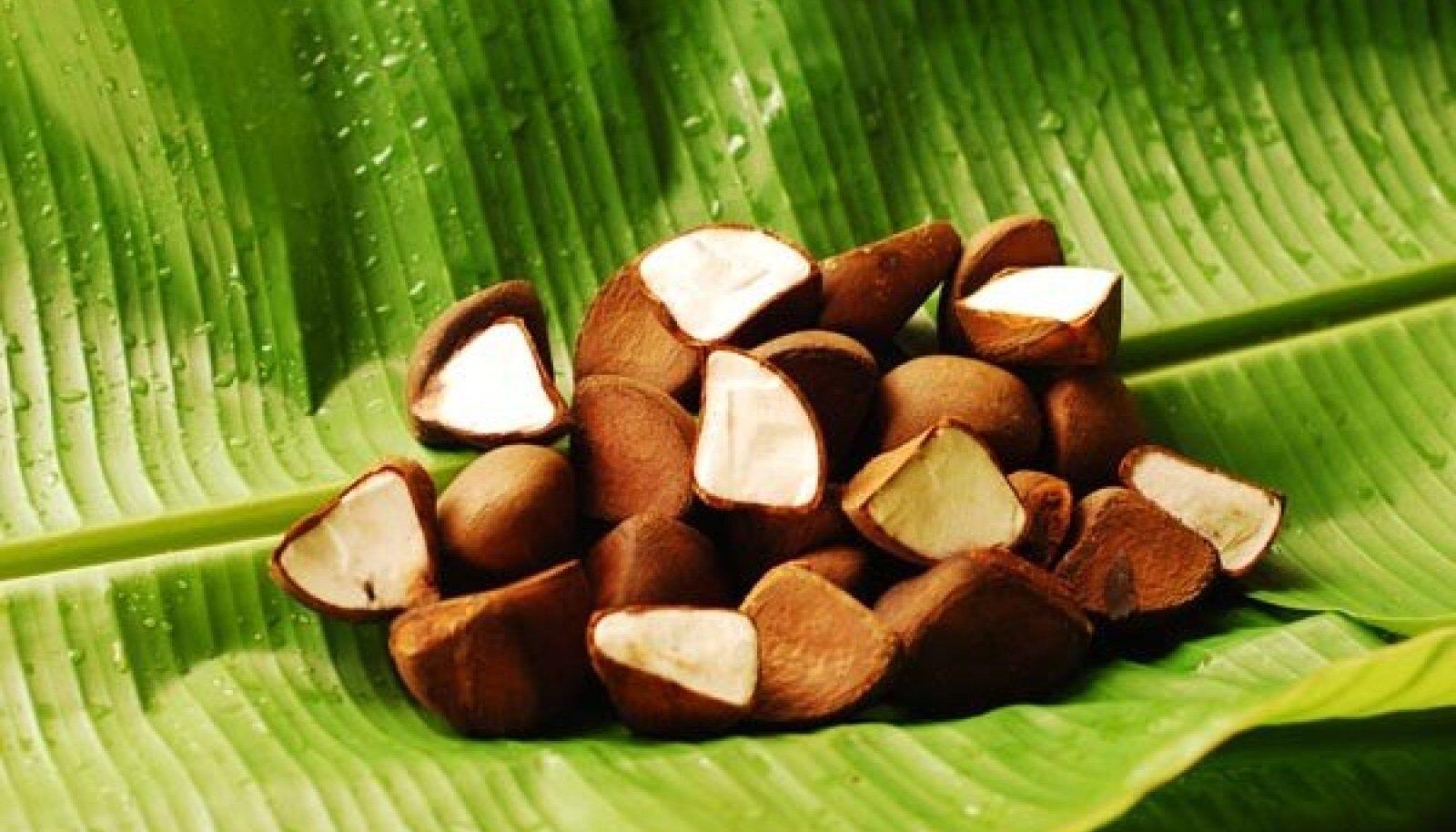 Andiroobapähklid