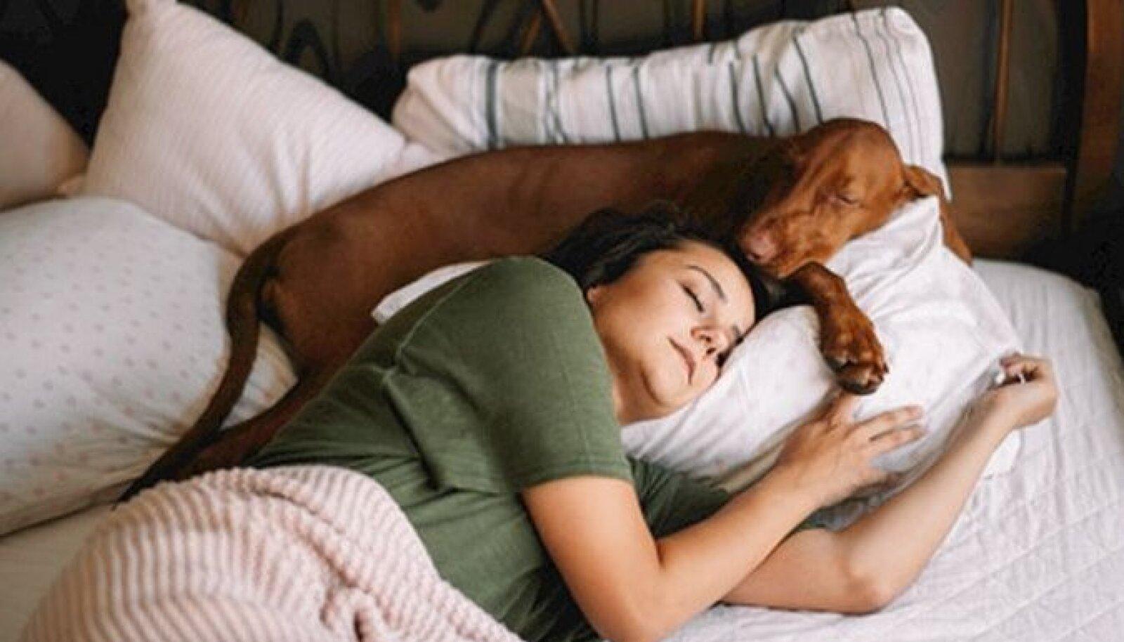 Ваша кровать принадлежит не только вам