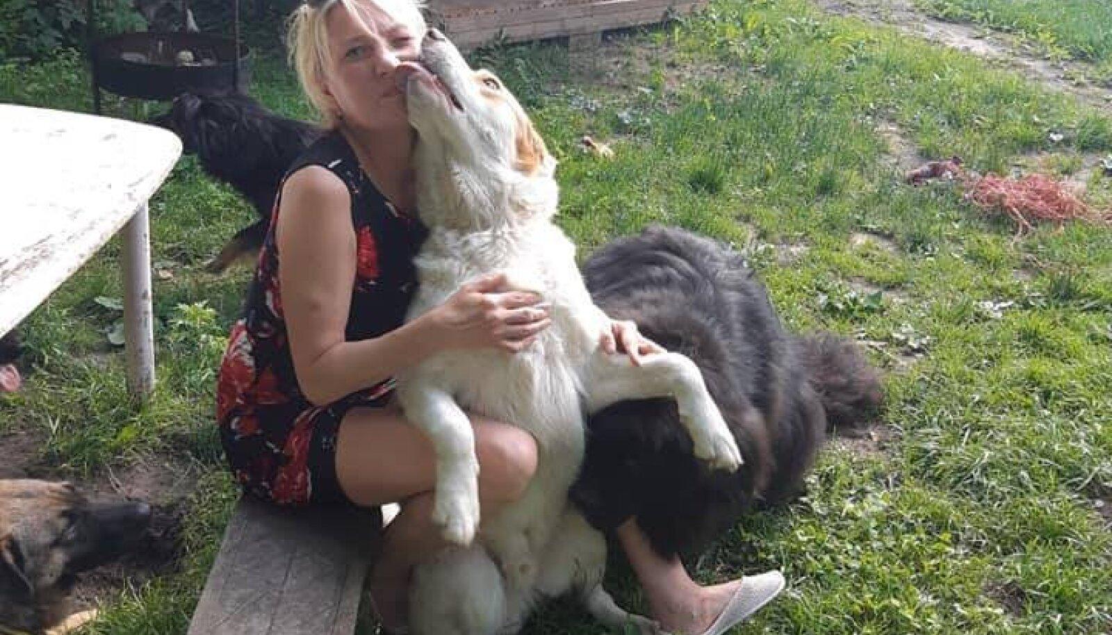 Irmeli missioon on aidata just vanu ja vigastatud koeri