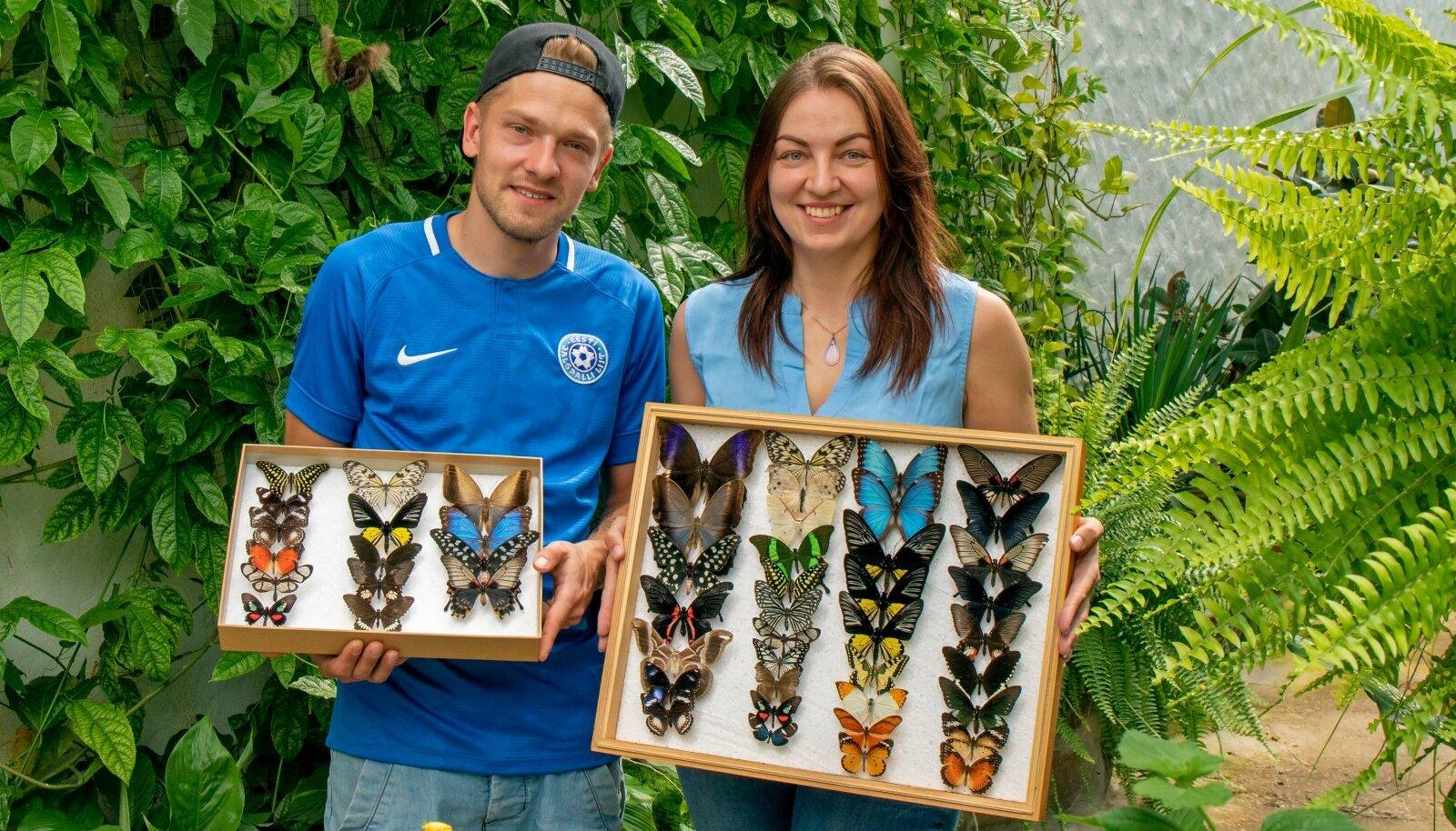 Kärt ja Oliver näitavad liblikaid, kes on olnud nende hoolealused.