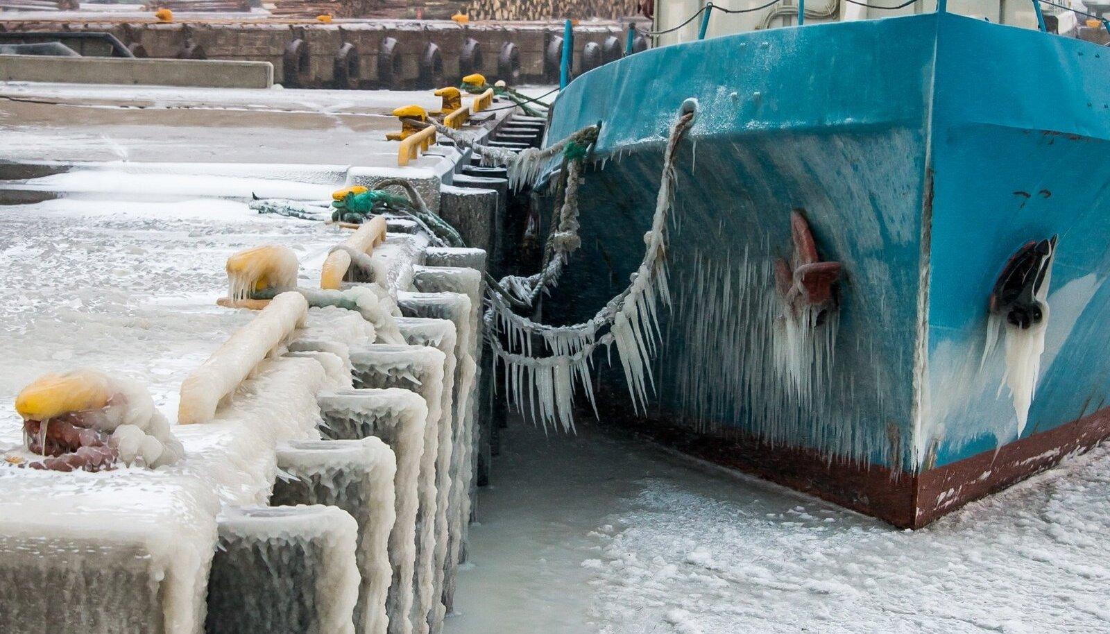 Saaremaal on kaks päeva tuisanud ja temperatuur neljapäeval jäi alla -12 kraadi. Sõrves oli võimalik tuule, vee ja külma kunstiteoseid näha, Roomassaare sadamas jäätusid laevad. Õhtuks tuis tugevnes ja temperatuur hakkas langema.