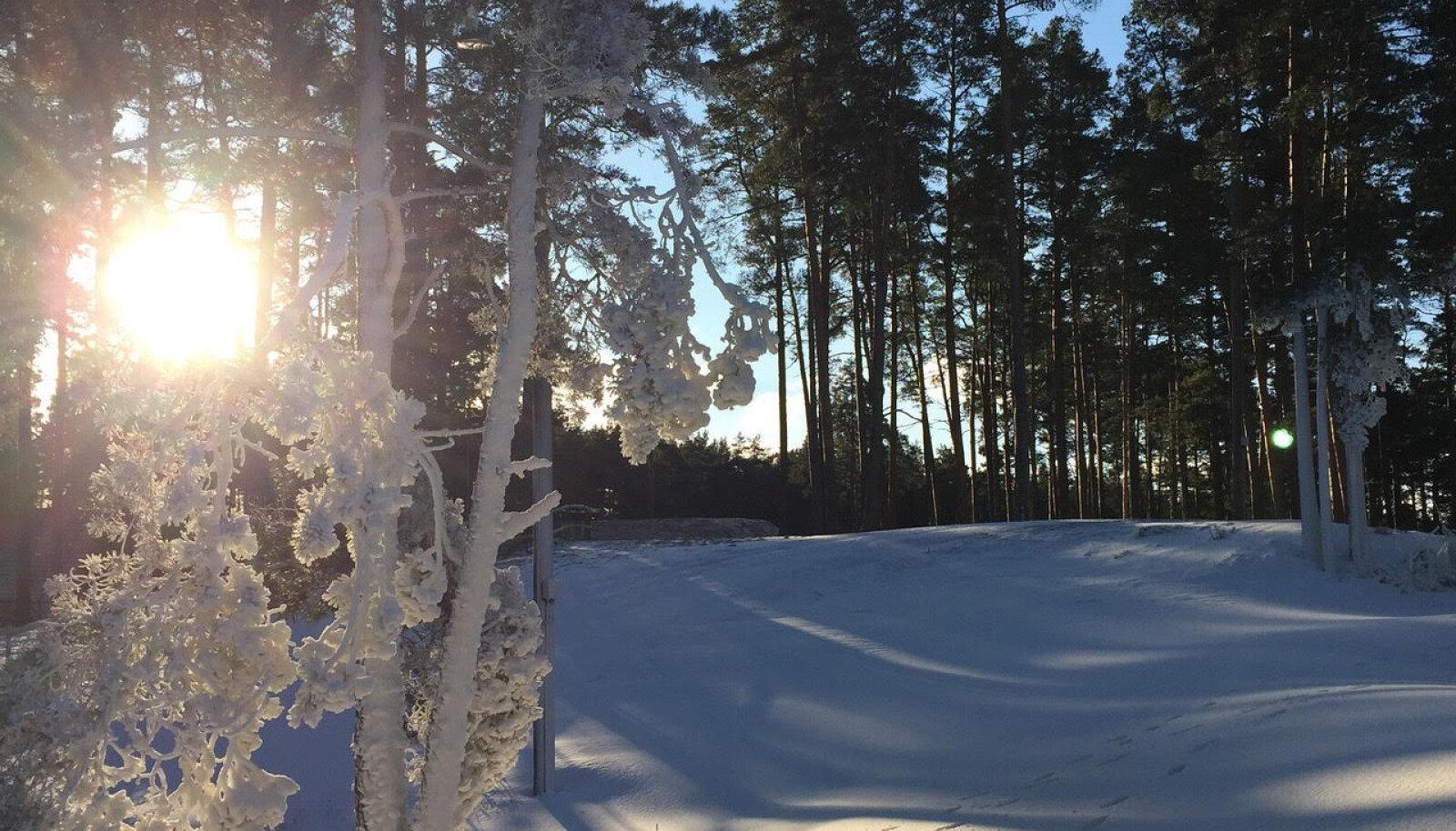 Fotol: Hommikune Jõulumäe terviserada