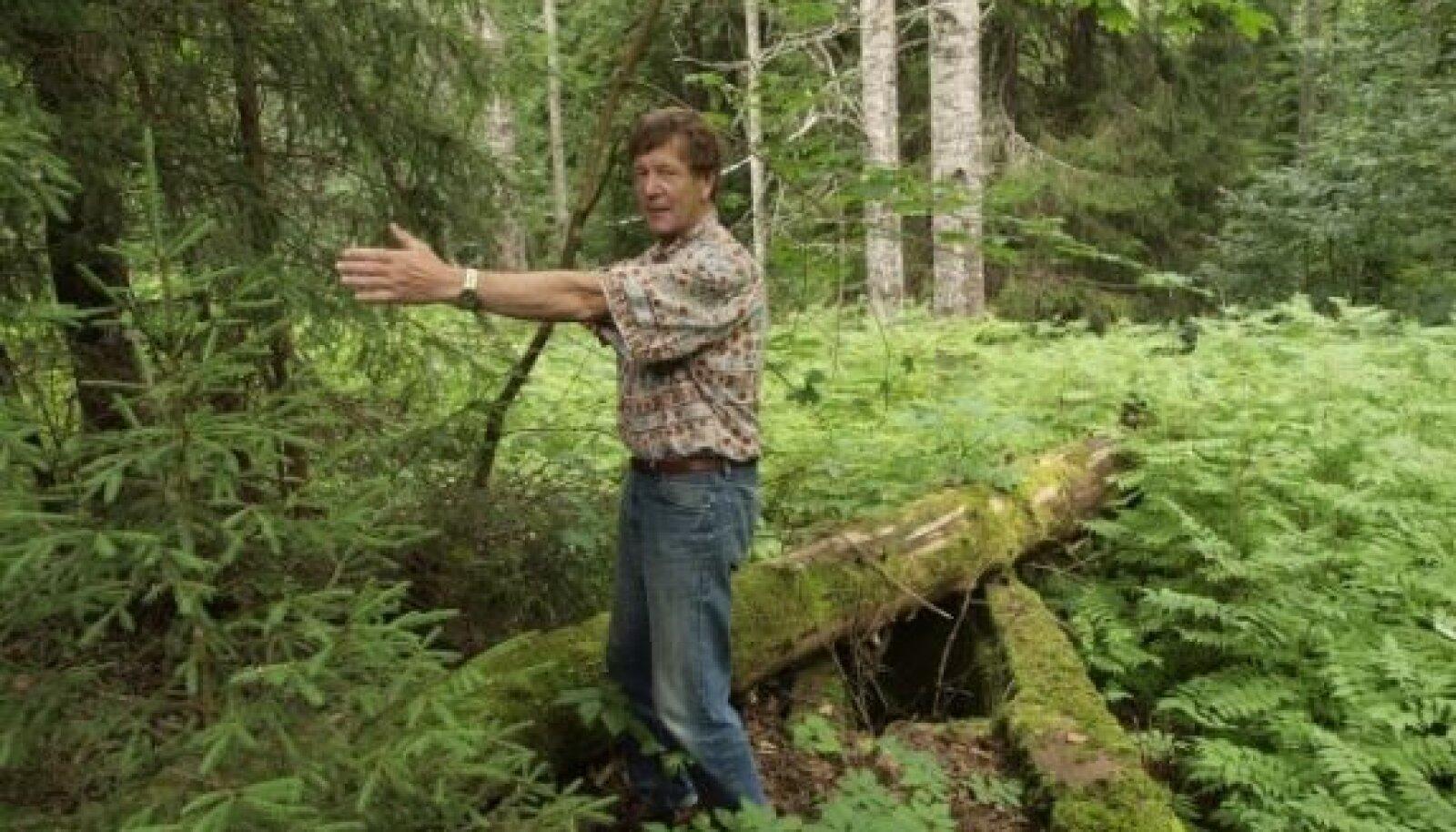 Koitjärve erak Jaak Veisserik on veendunud, et just Koitjärve paigad, kus A. H. Tammsaare suviti end laadimas käis, on klassikut suurromaani loomisel otsustavalt mõjutanud. Kahjuks ei taha Eesti riik seda kultuurilooliselt tähtsat paika väärtustada –  kõi