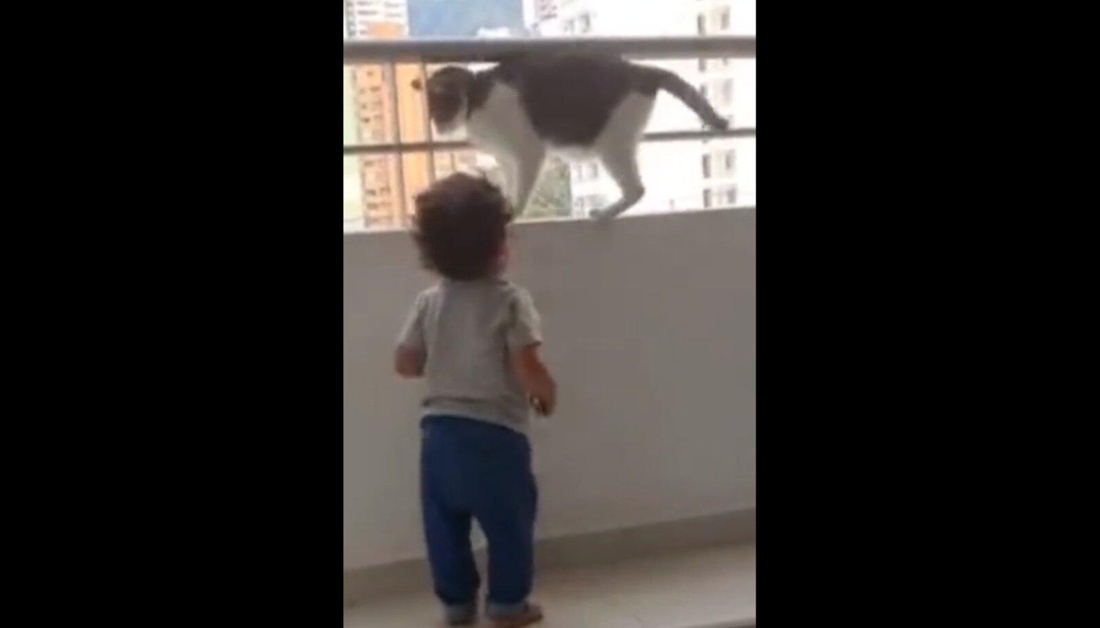 Kass ja väikelaps rõdul