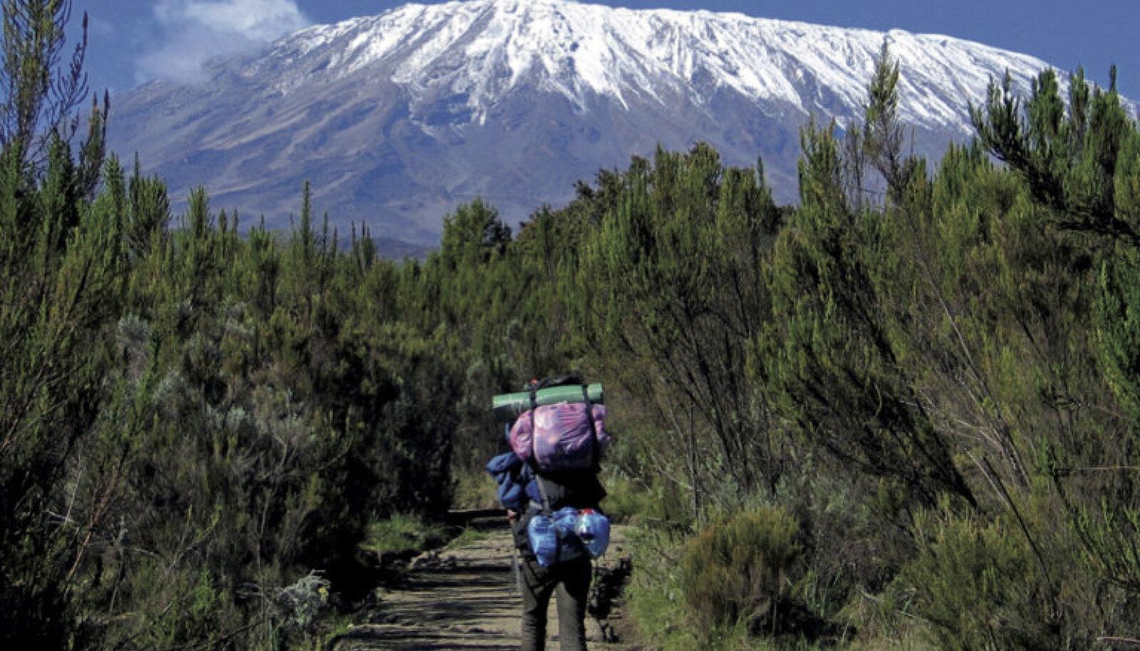 """Raamatu """"Minu Kilimanjaro"""" kaas"""