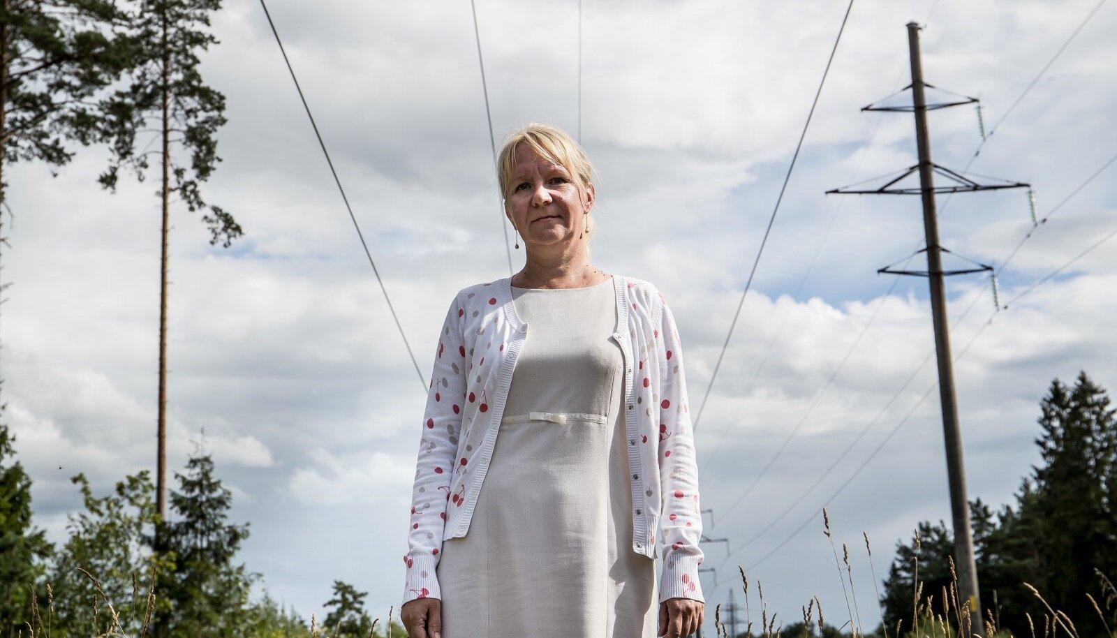 Külli Veidemann seisab tema maale rajatud Aidu tuulepargi elektriliinide all, mille rajamiseks ta ei andnud nõusolekut.