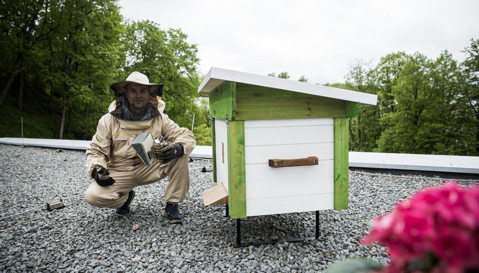 Mesinik Jaan Olmaru hoolitseb hotelli katuseelanike eest.