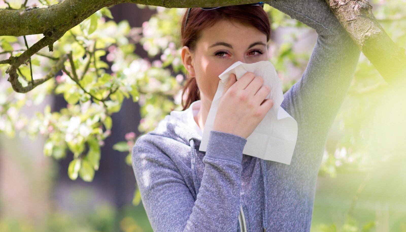Kunis õiteaeg toob paljudele inimestele kaasa tüütud allergiast põhjustatud vaevused.