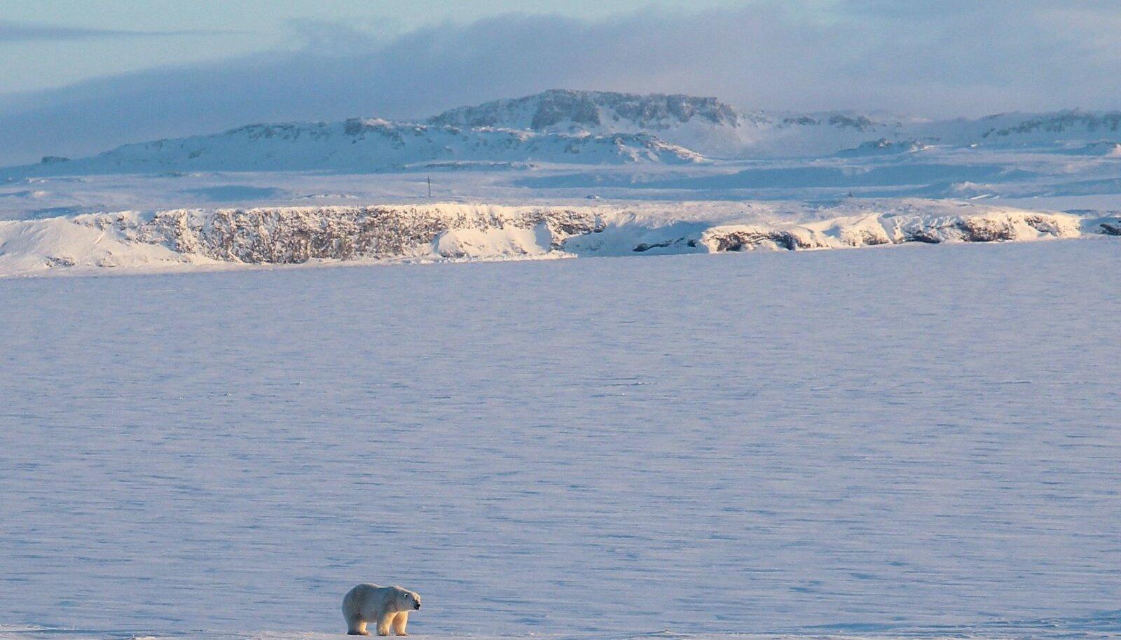 Novaja Zemlja jää all võib peituda veel nii mõnigi saar, arvavad spetsialistid.