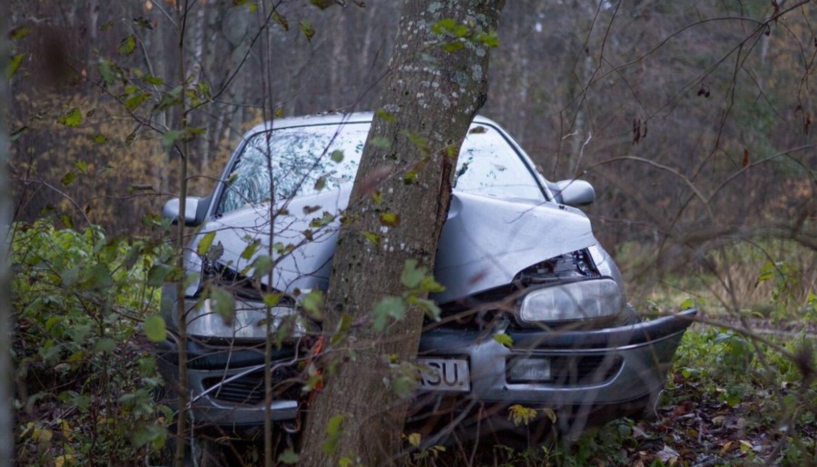 Vastu puud sõitnud Opel teletorni taga.