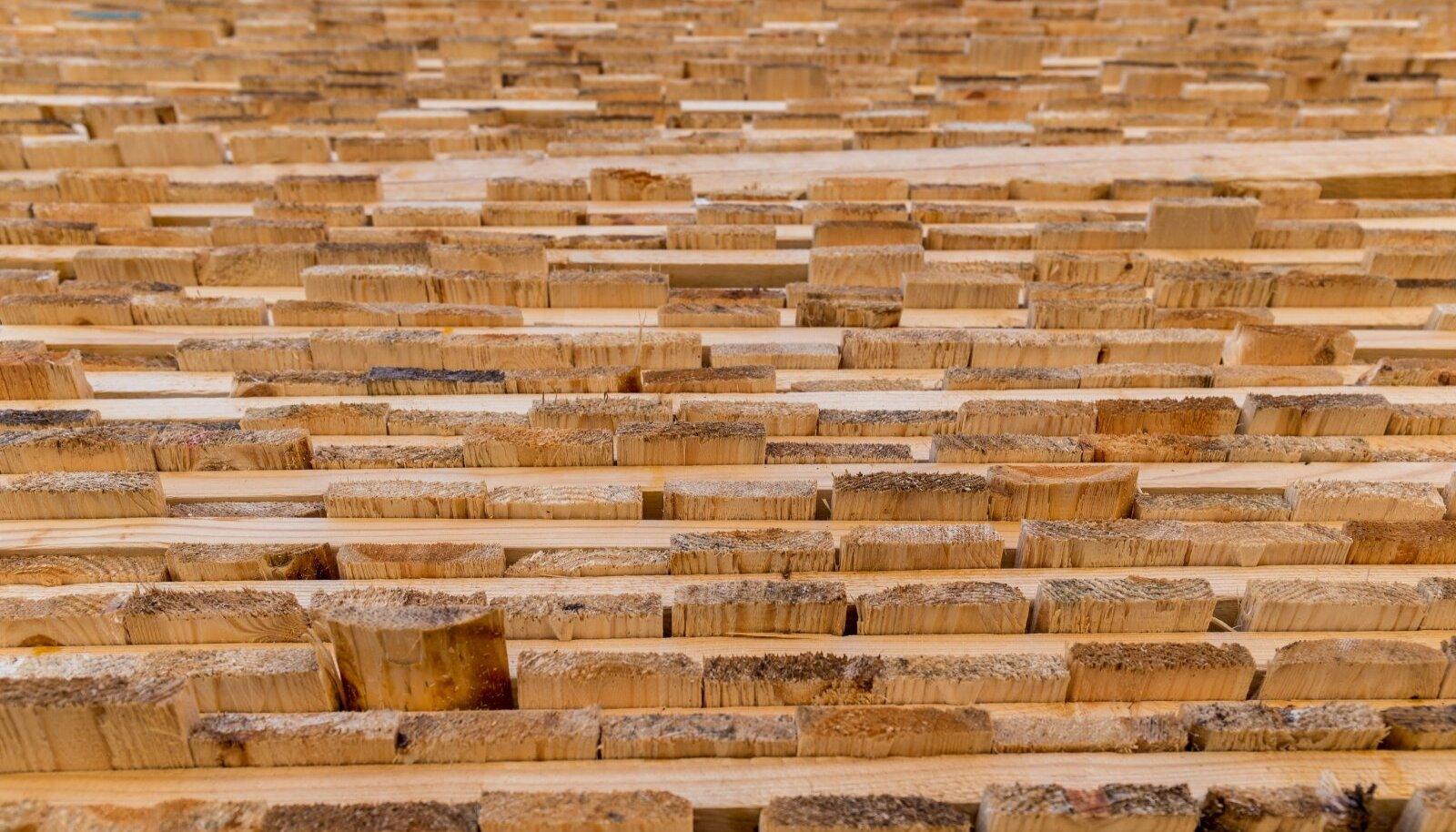 Eesti kõige suurem majandusharu on töötlev tööstus, mille osa on näiteks puidutööstus.