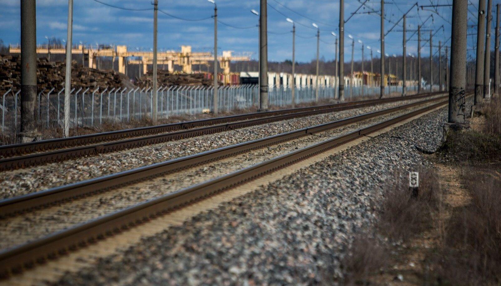 Eesti Raudtee rööpad ootavad kaupa, millelt riigile raha teenida. Vaguneid aga veereb mööda neid aina vähem.