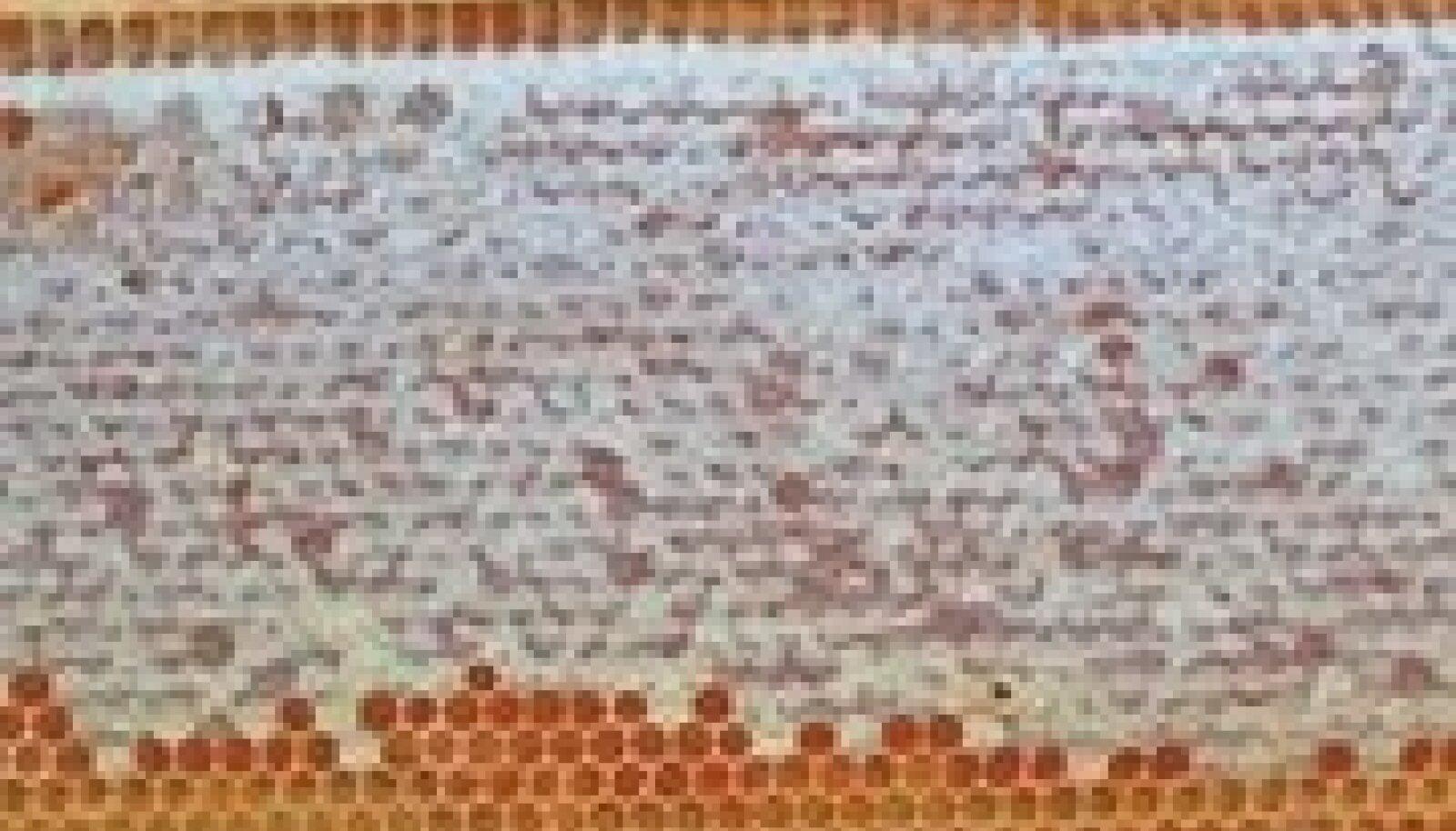 Kui kärg on kaanetatud rohkem kui pooles ulatuses, on mesi selles valminud.