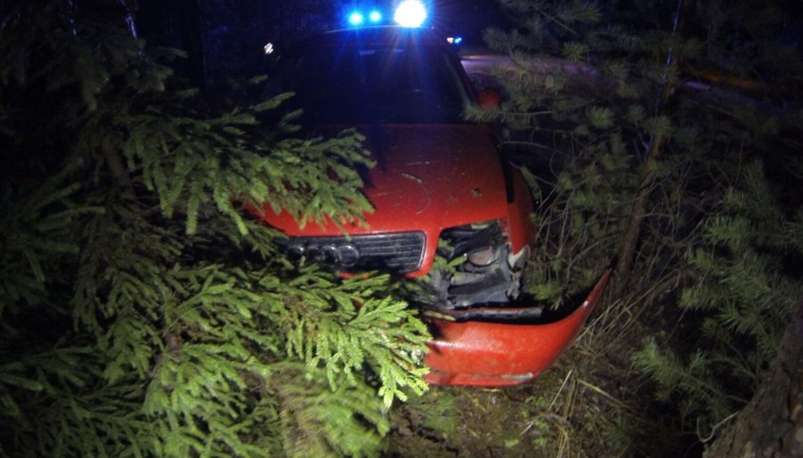 Liiklusõnnetus Elvas