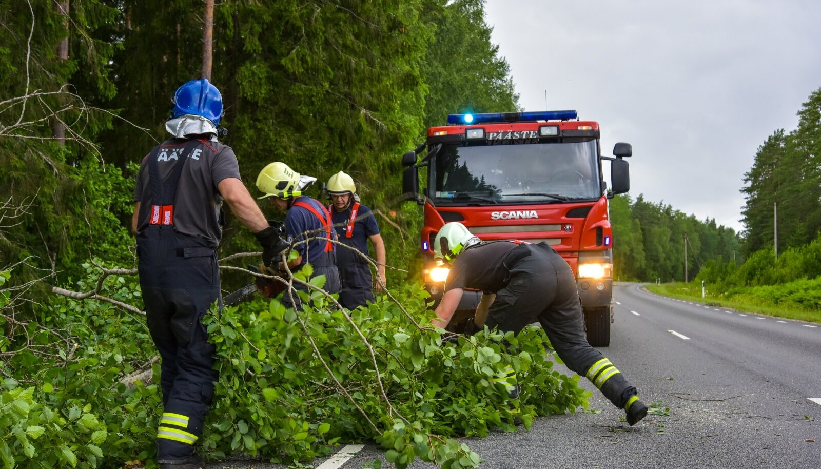 Päästjad teelt puid eemaldamas.